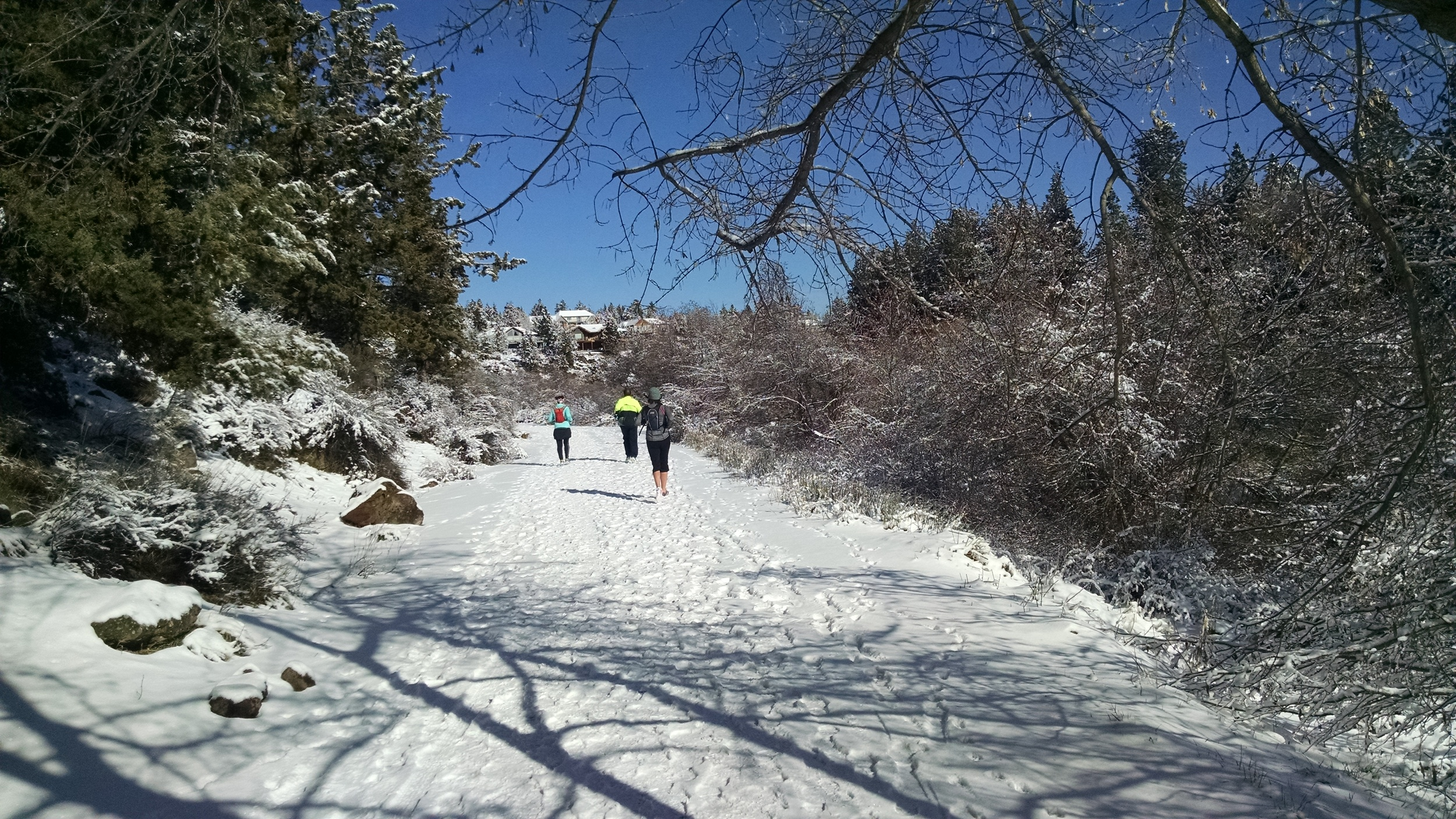 The hardest run so far--14 miles in the snow.