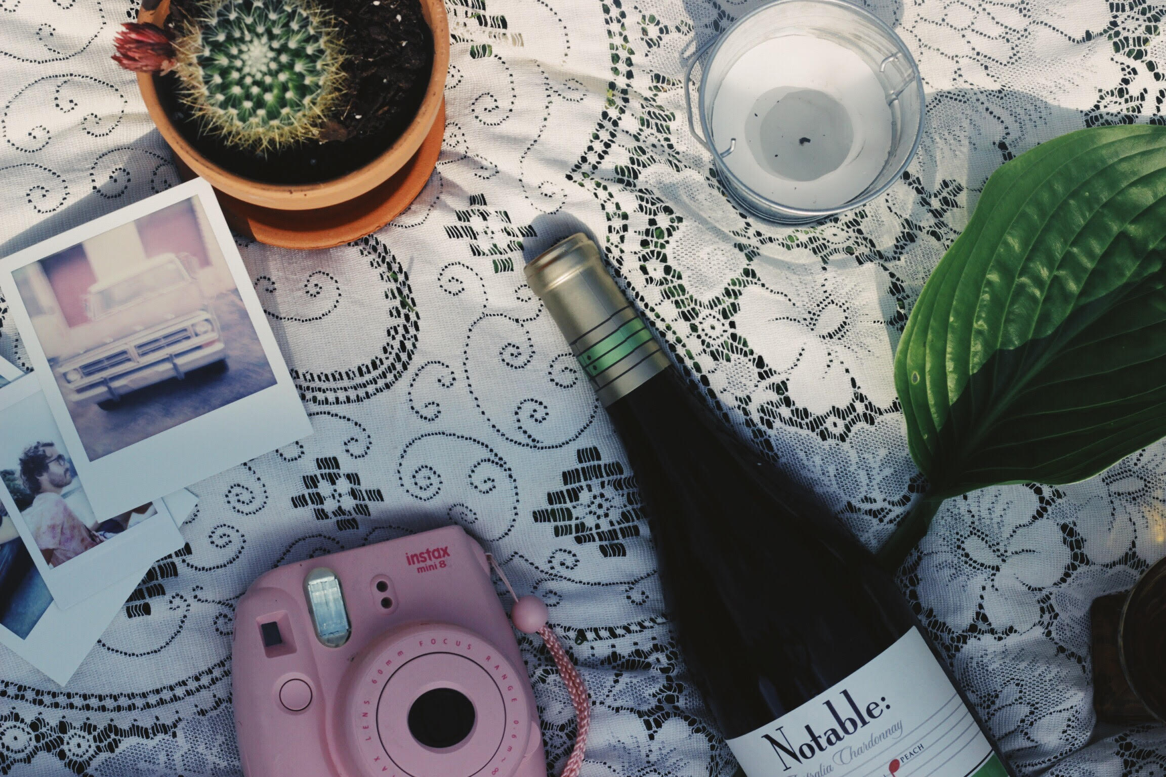 Outdoor picnic with Notable Wine