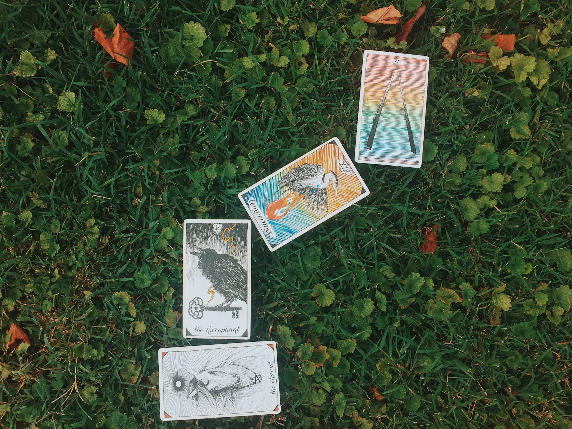 August Tarot Reading Oui We
