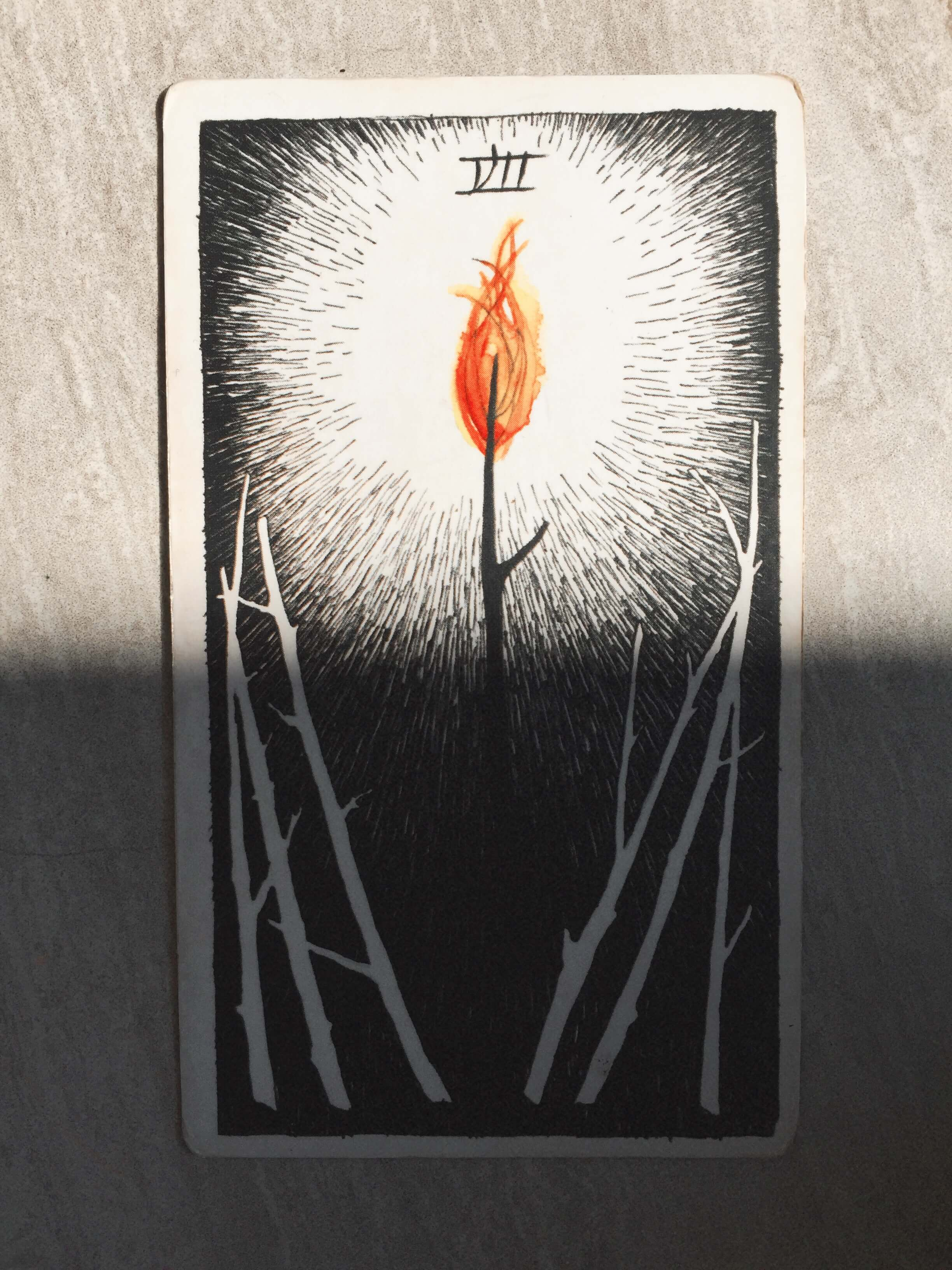 Seven of Wands / Oui We