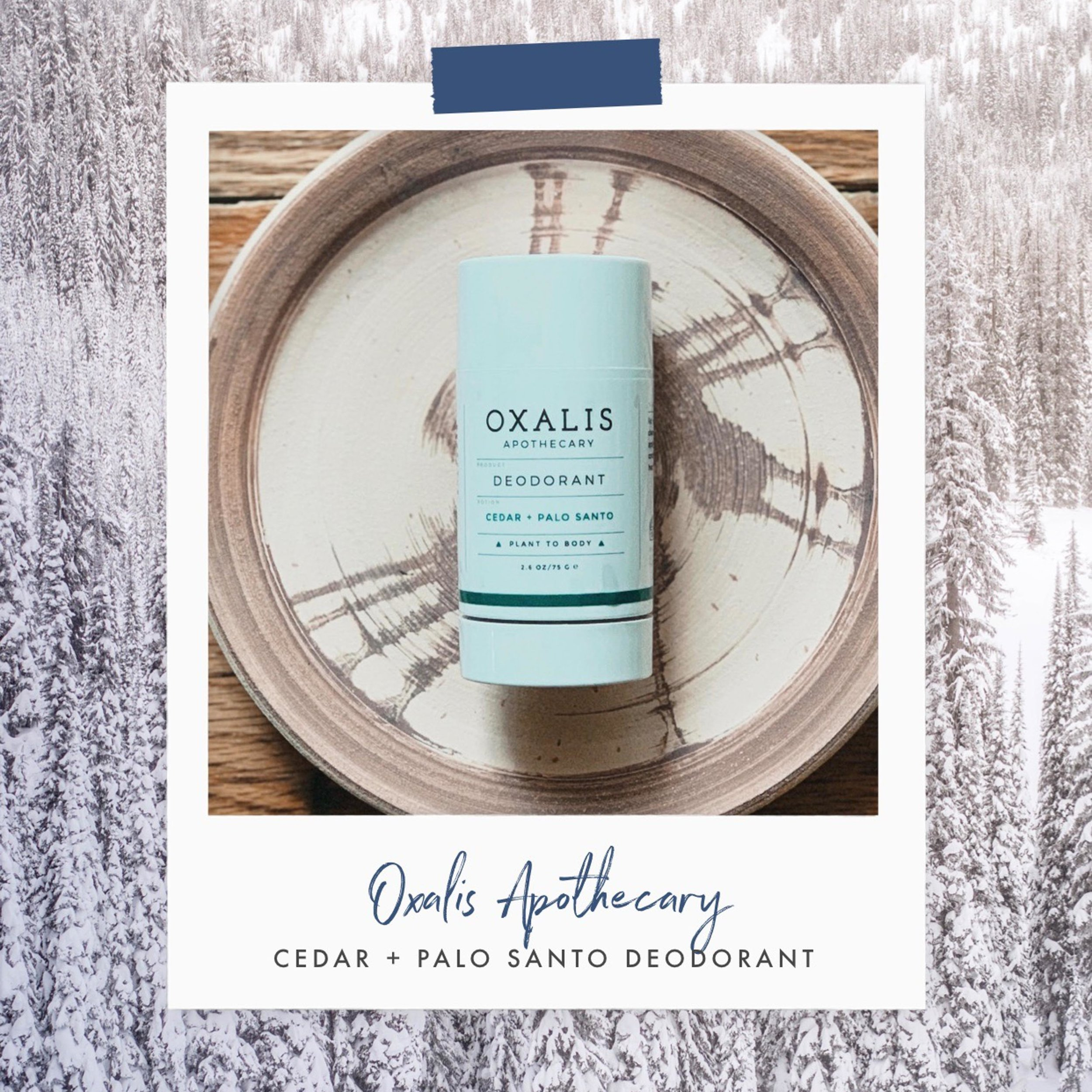 Cedar + Palo Santo Deodorant