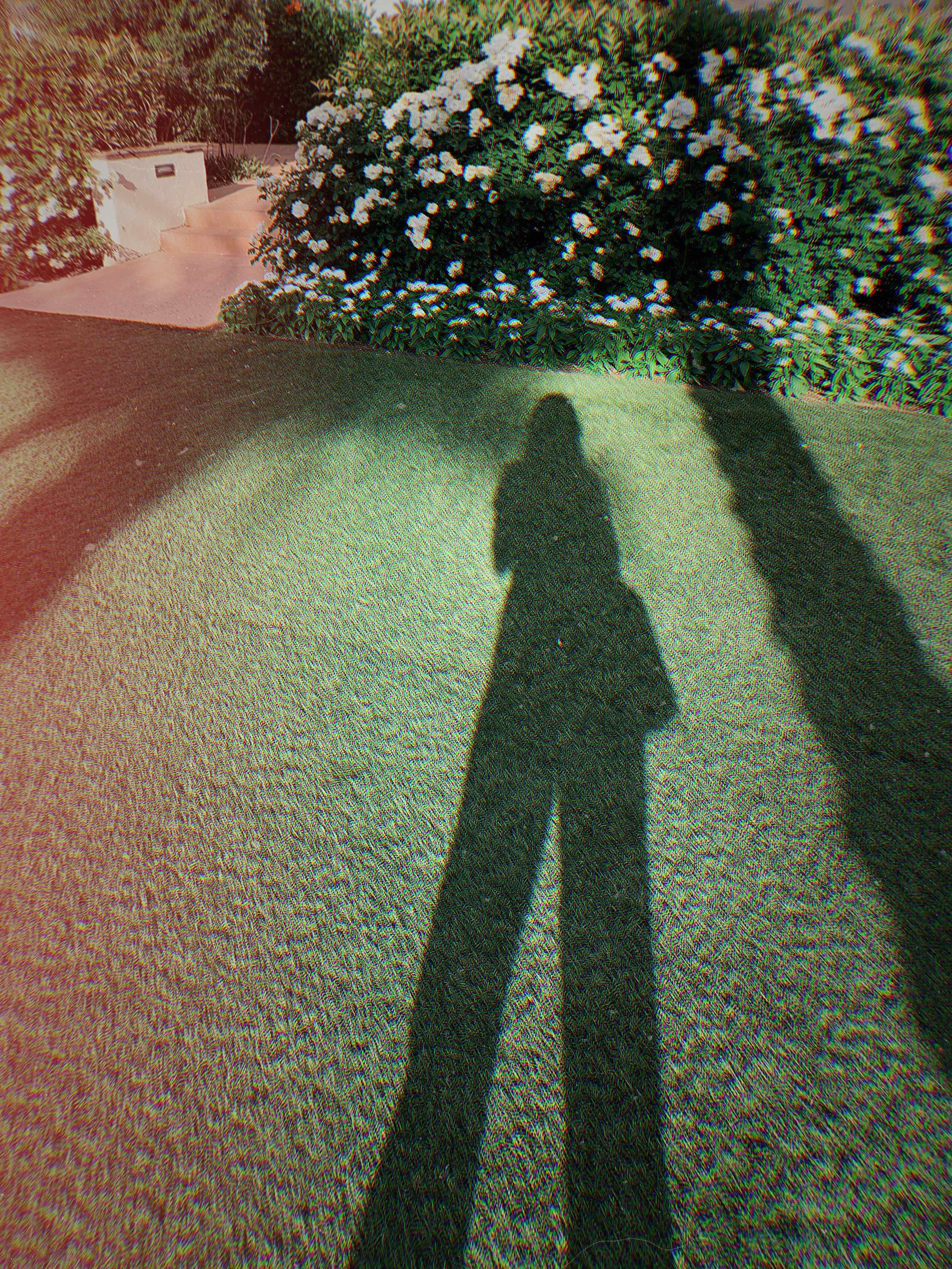 shadow behavior, carl jung, psychology, female empowerment, shadow picture