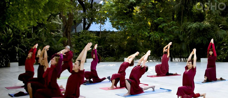 Top 10 Wellness Retreats in India: Yoga, Ayurveda, Spirituality