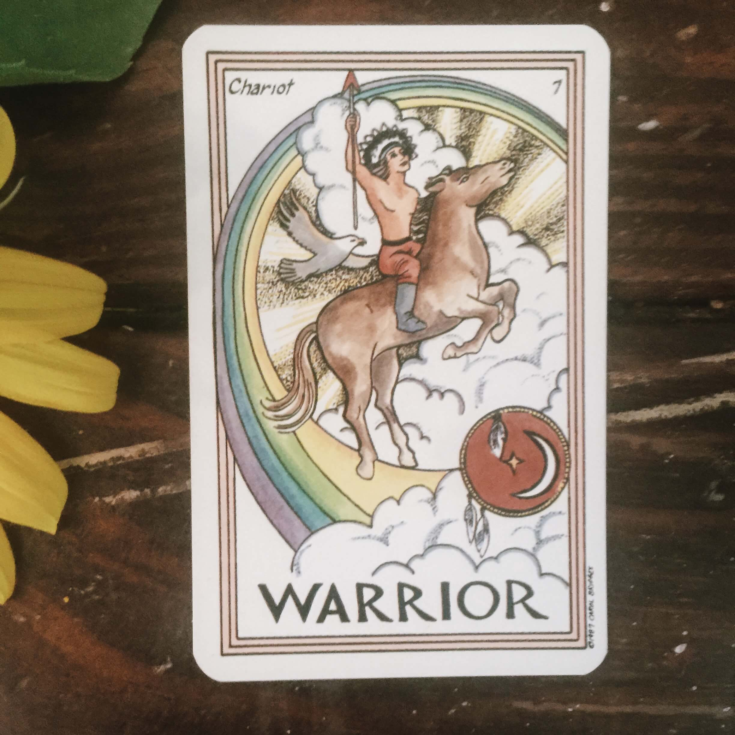 Warrior Card Tarot