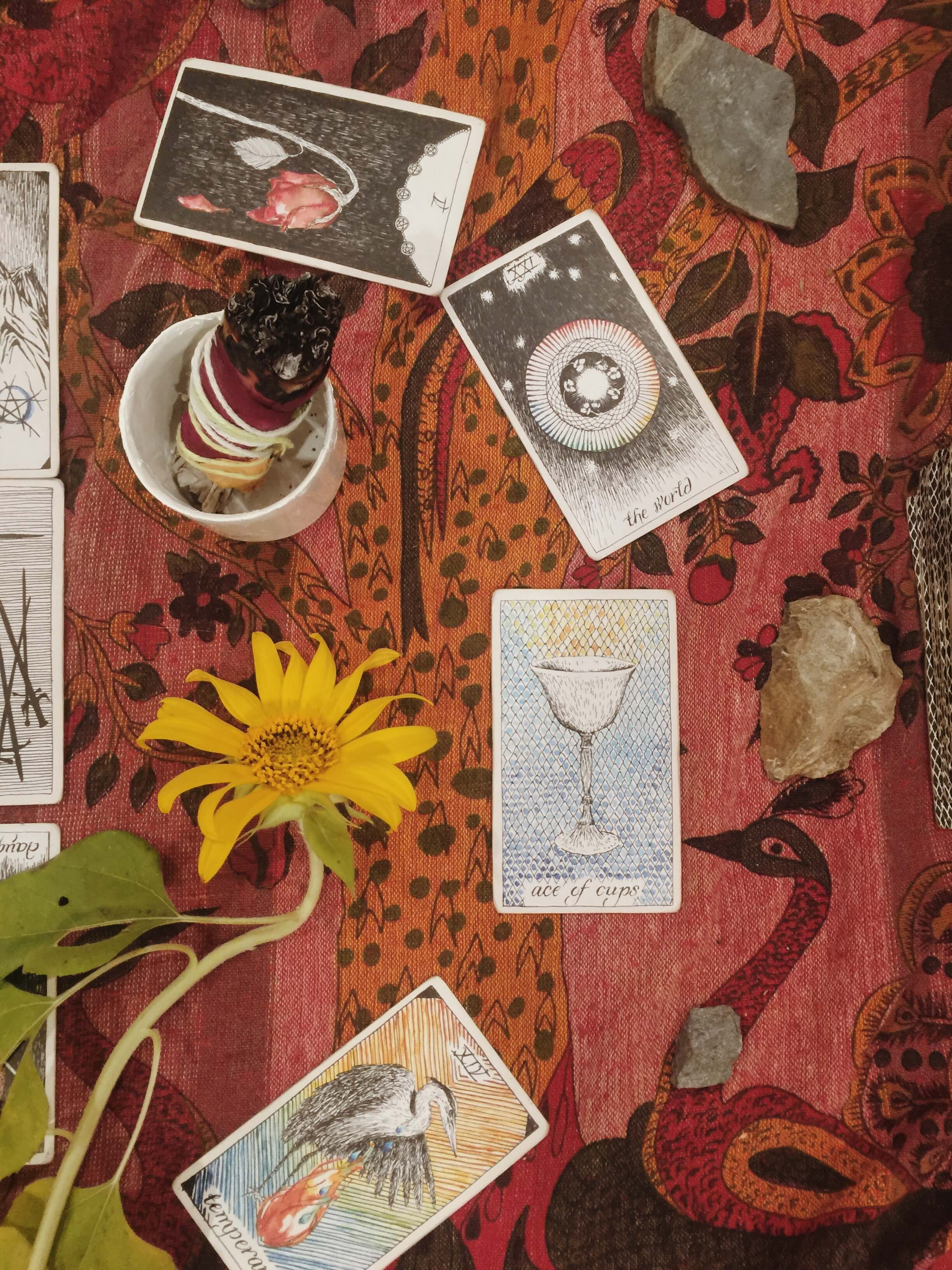 Tarot: Ace of Cups — Oui We