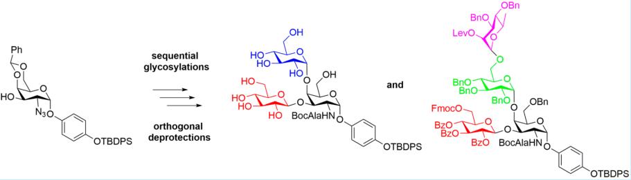 Methods to prepare antigens from within the lipopolysaccharide of  P. aeruginosa.