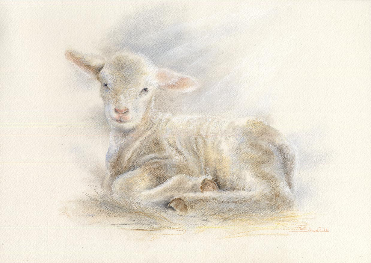 LITTLE LAMB WITH HEAVENLY GLOW