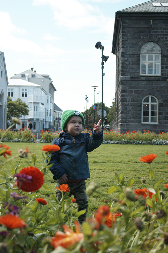 Reykjavik with a baby