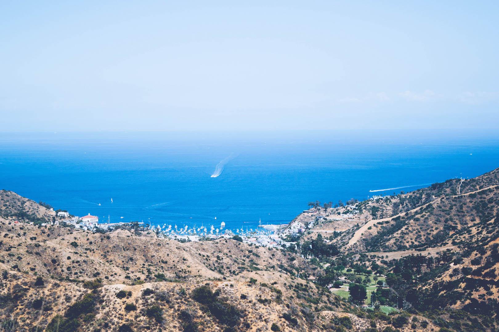 emilymeiliu_Catalina Island_Garden to Sky_2.jpg