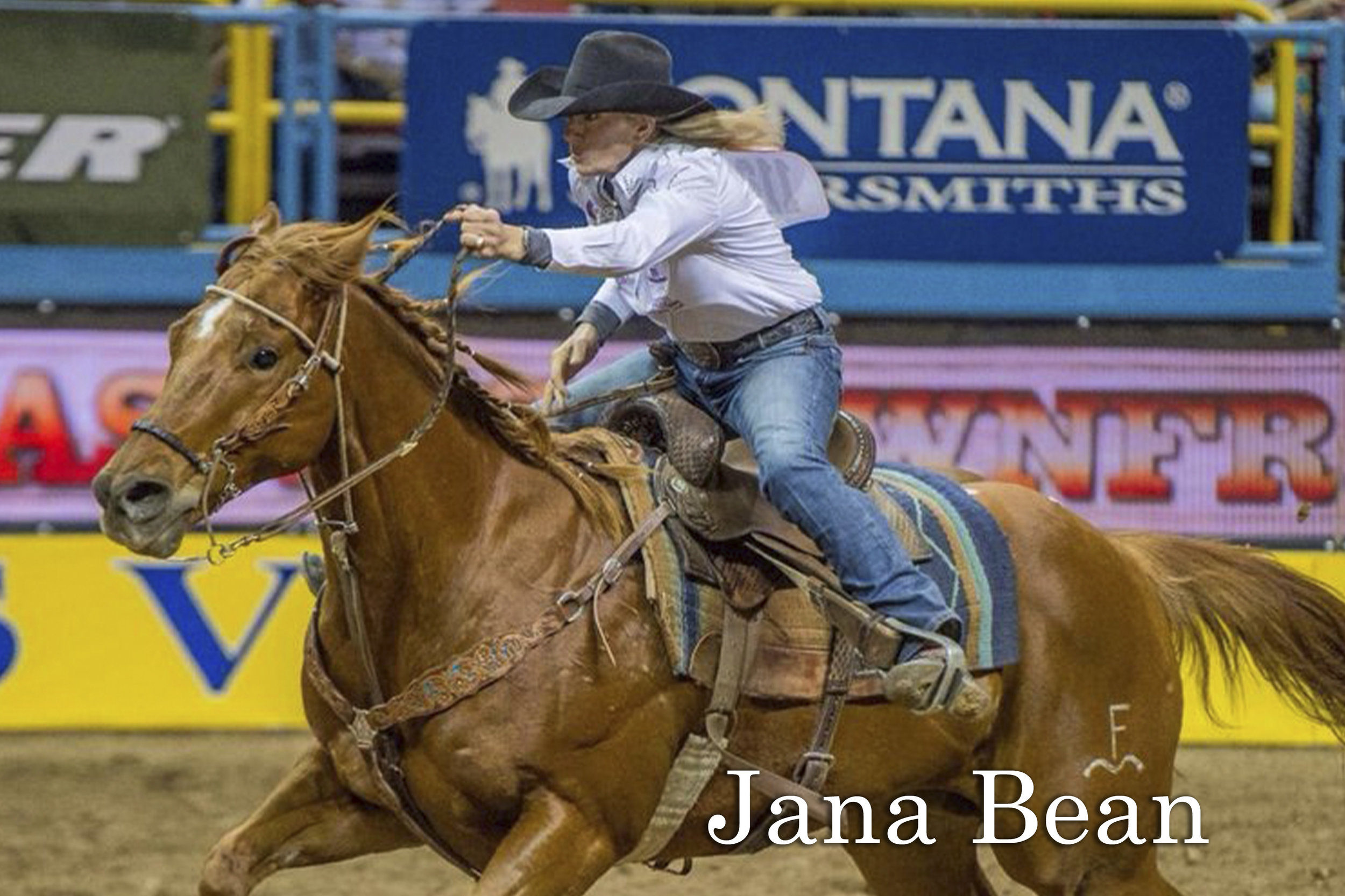 NFR Qualifier, Trainer, and Futurity Champion