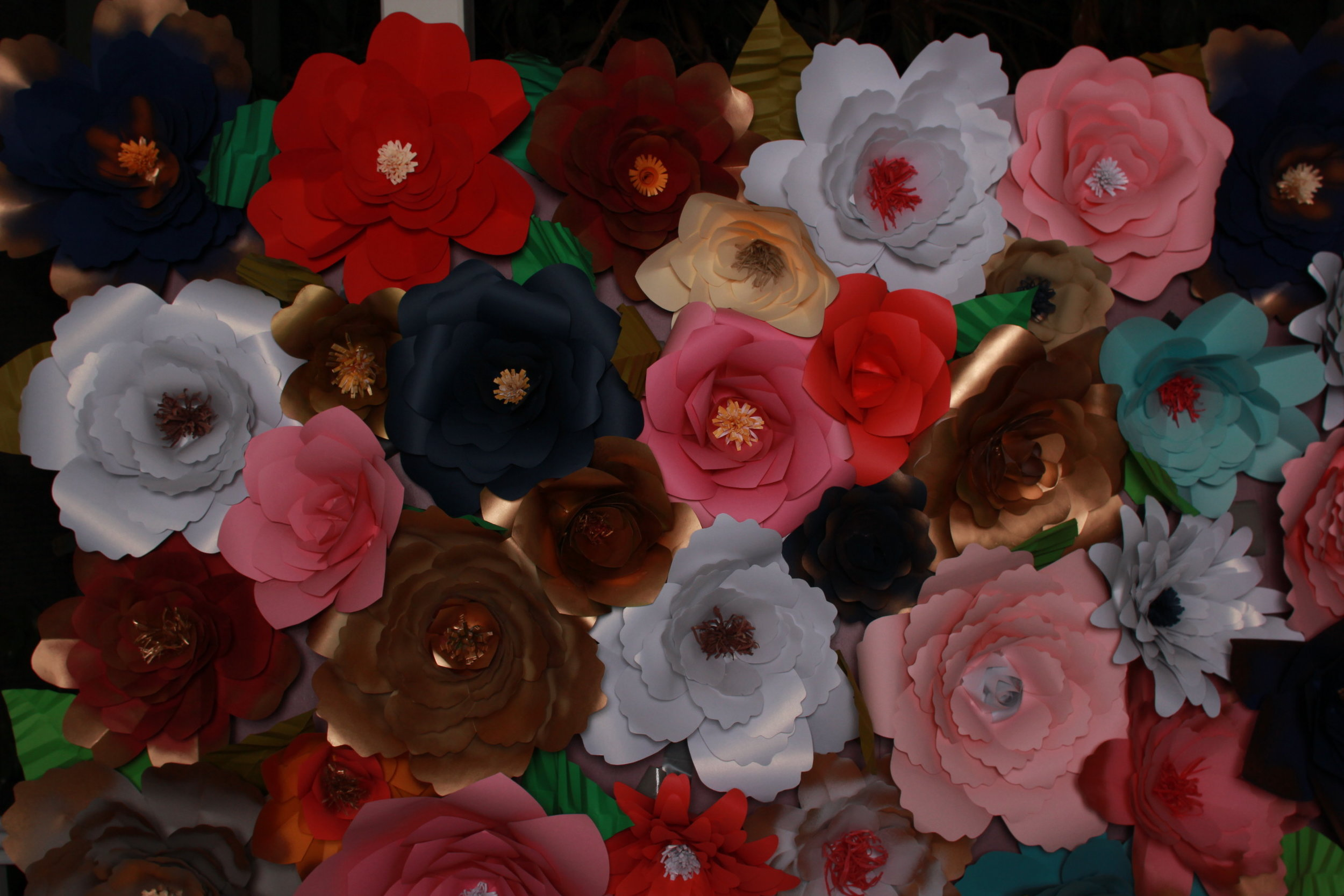Paper Flower Backdrop .JPG
