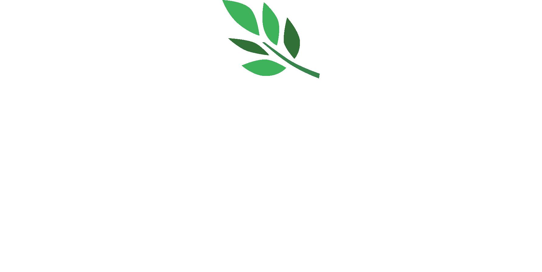 logo_pysrc_180415_white.png