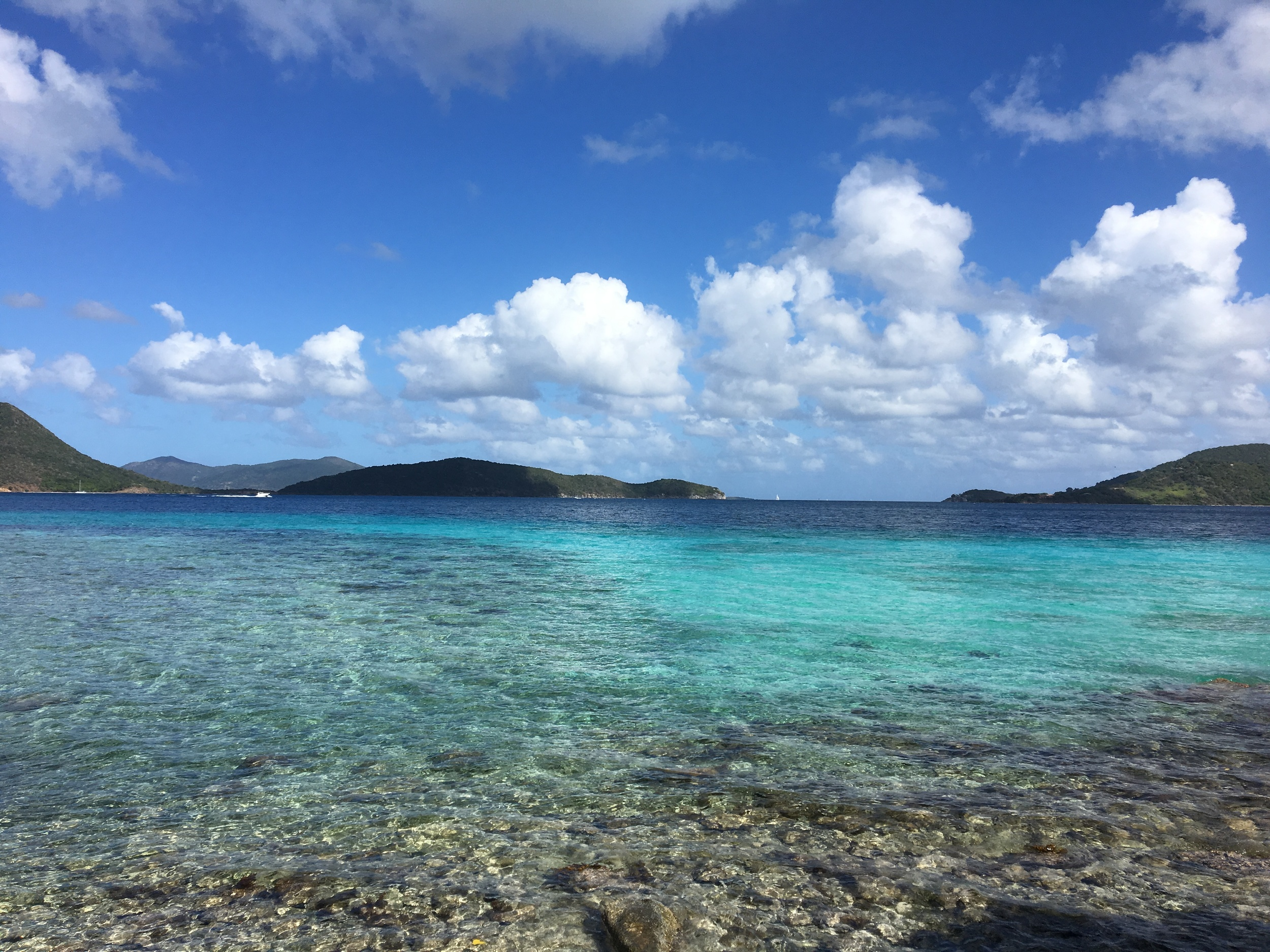 Next I traveled to St. John for a little tropical beach time, which was rejuvenating and the crystal clear ocean was filled with beautiful coral and fishies.