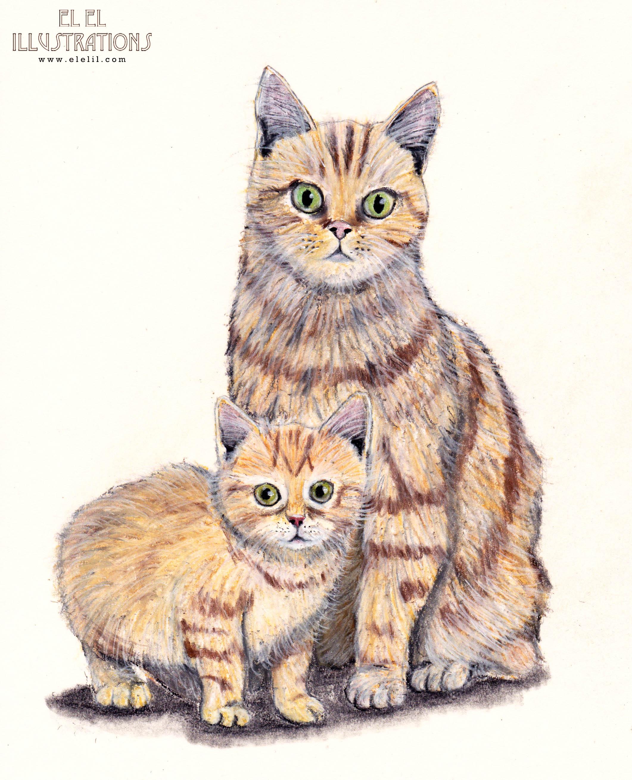 fathersday_cat_wm.jpg