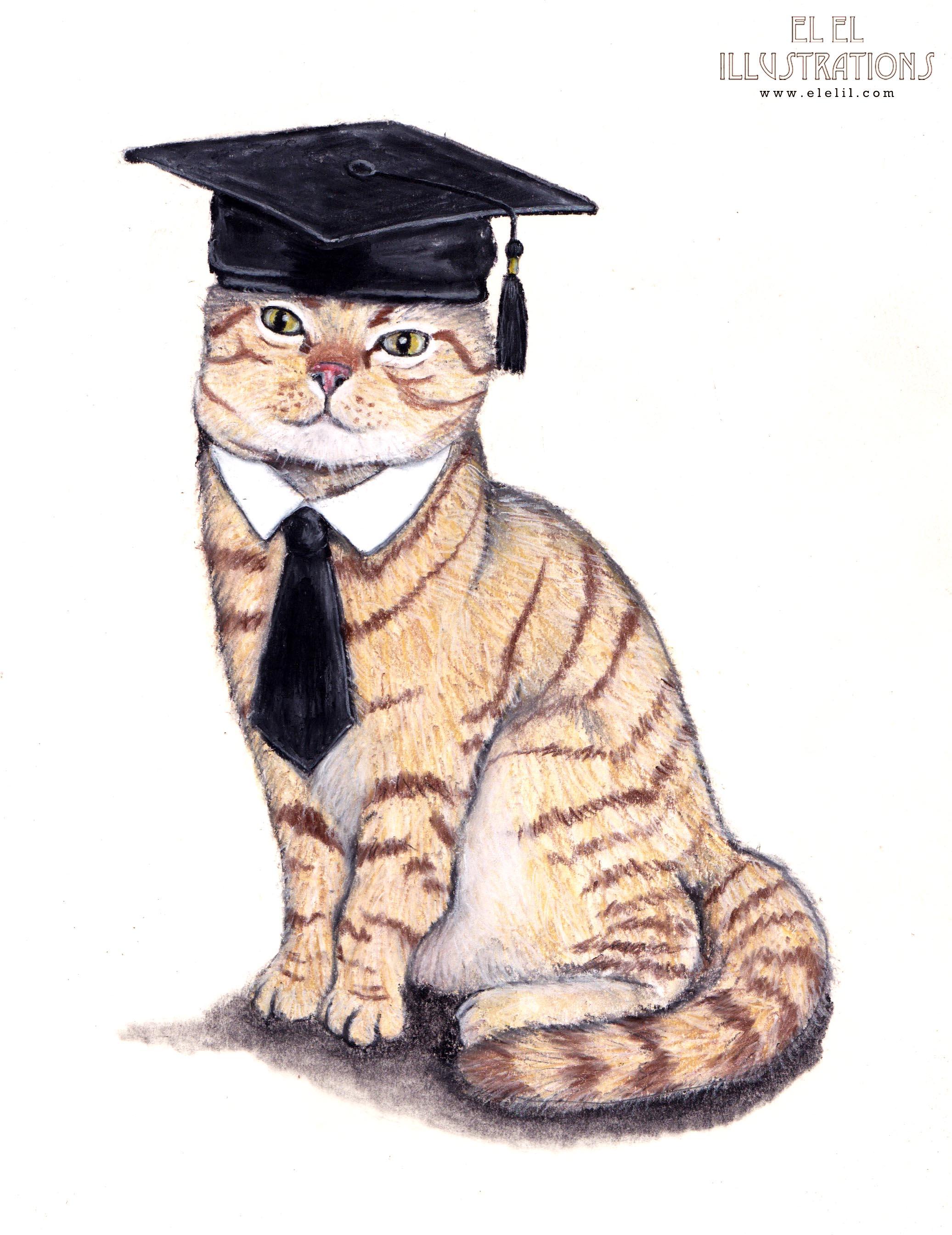graduation_cat_wm.jpg
