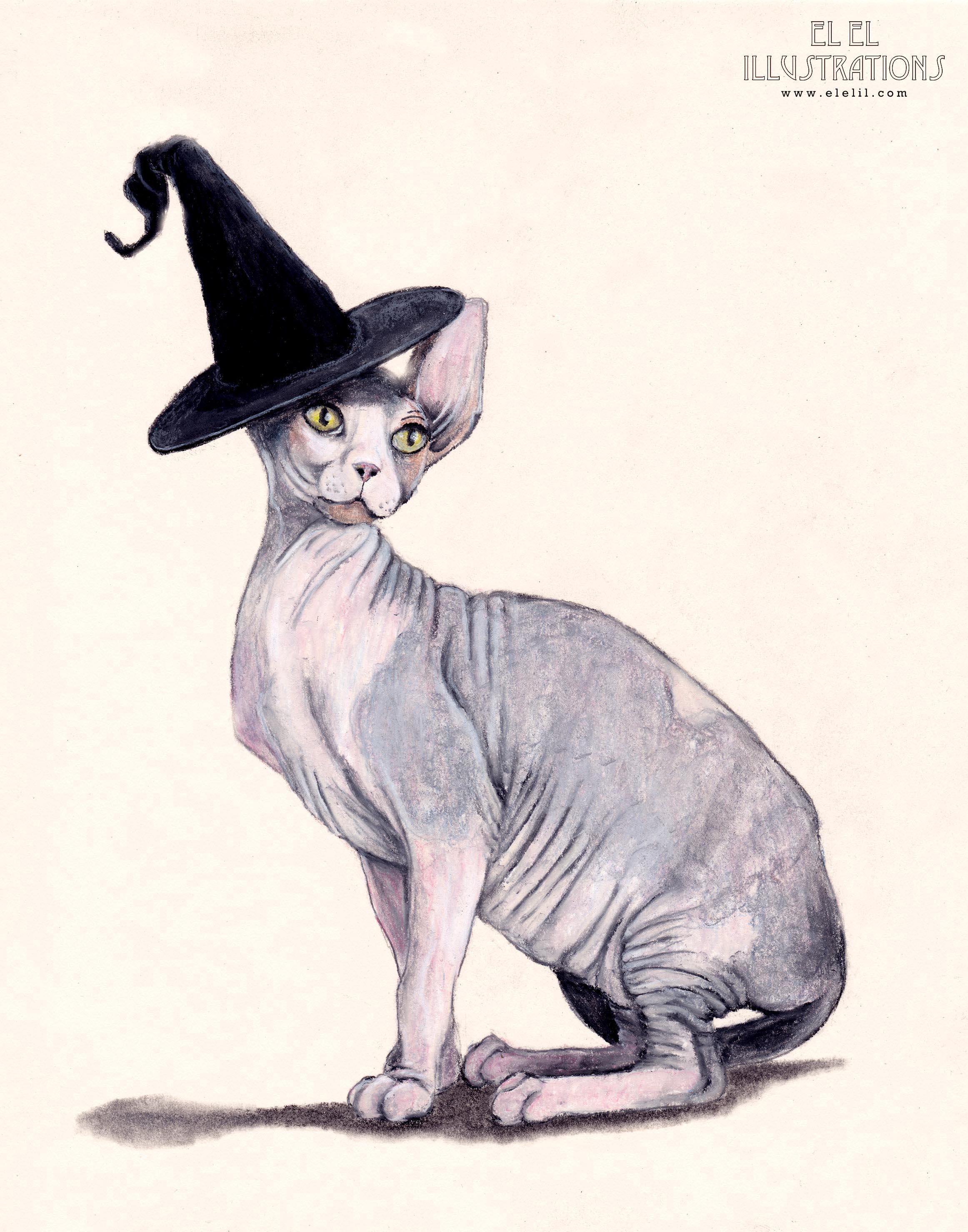 holiday_cat_halloweeen_wm.jpg