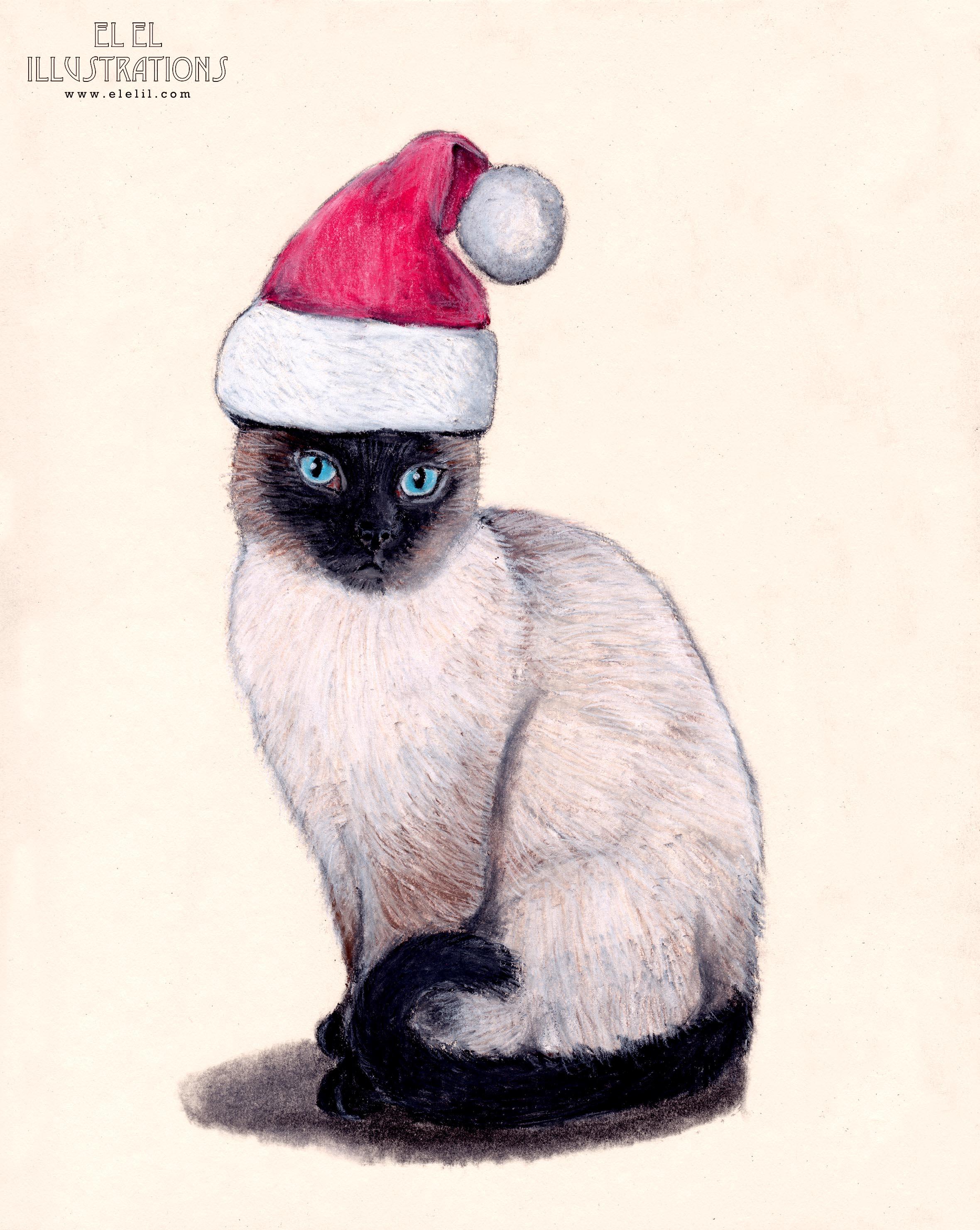 holiday_cat_christmas_wm.jpg