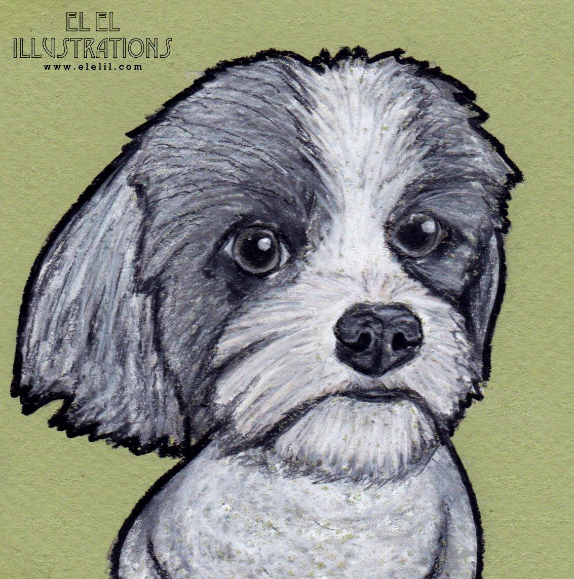 4x4_dog_victor_wm.jpg