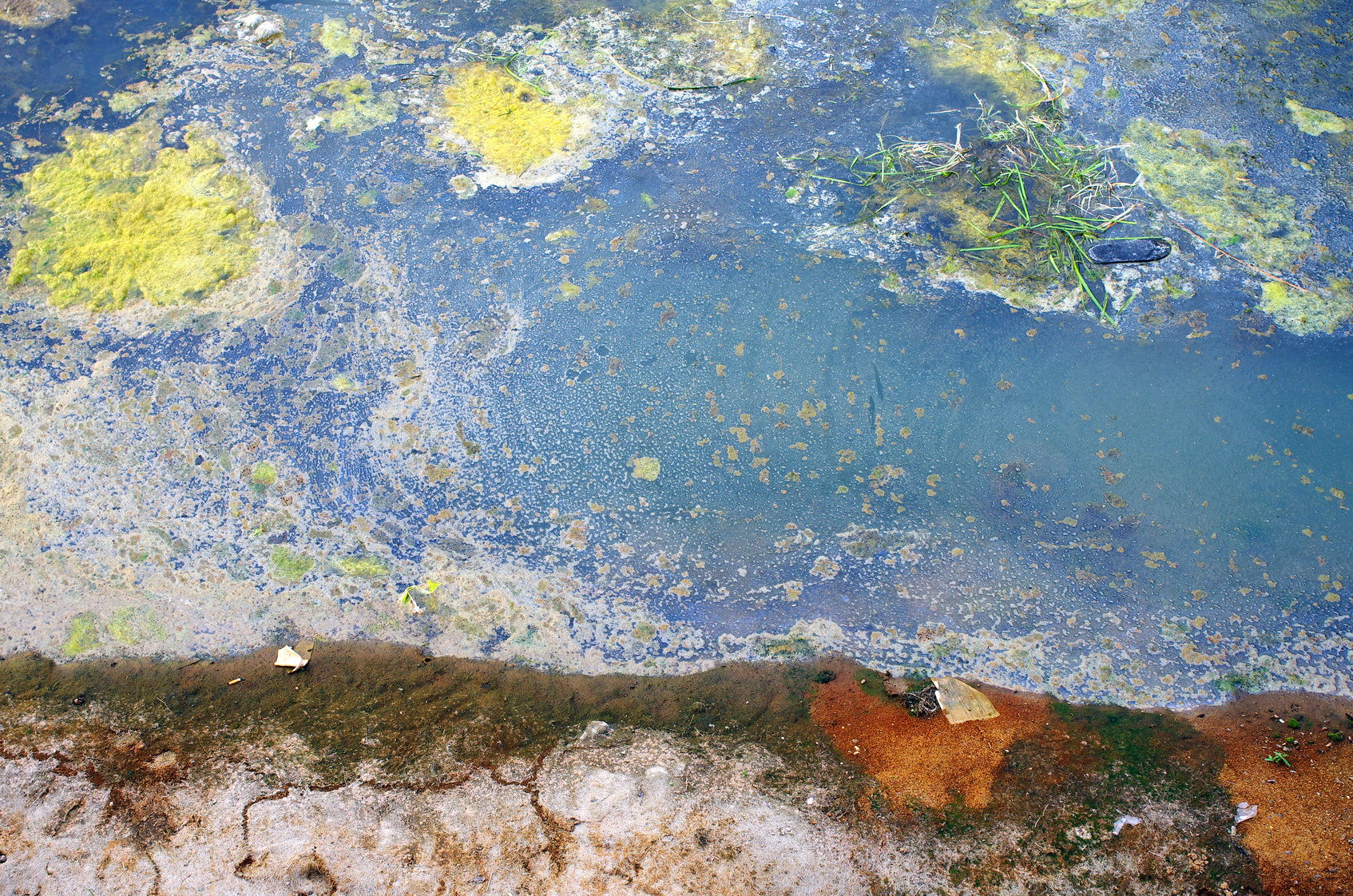 Fotolia_91279109_Polluted Water.jpg