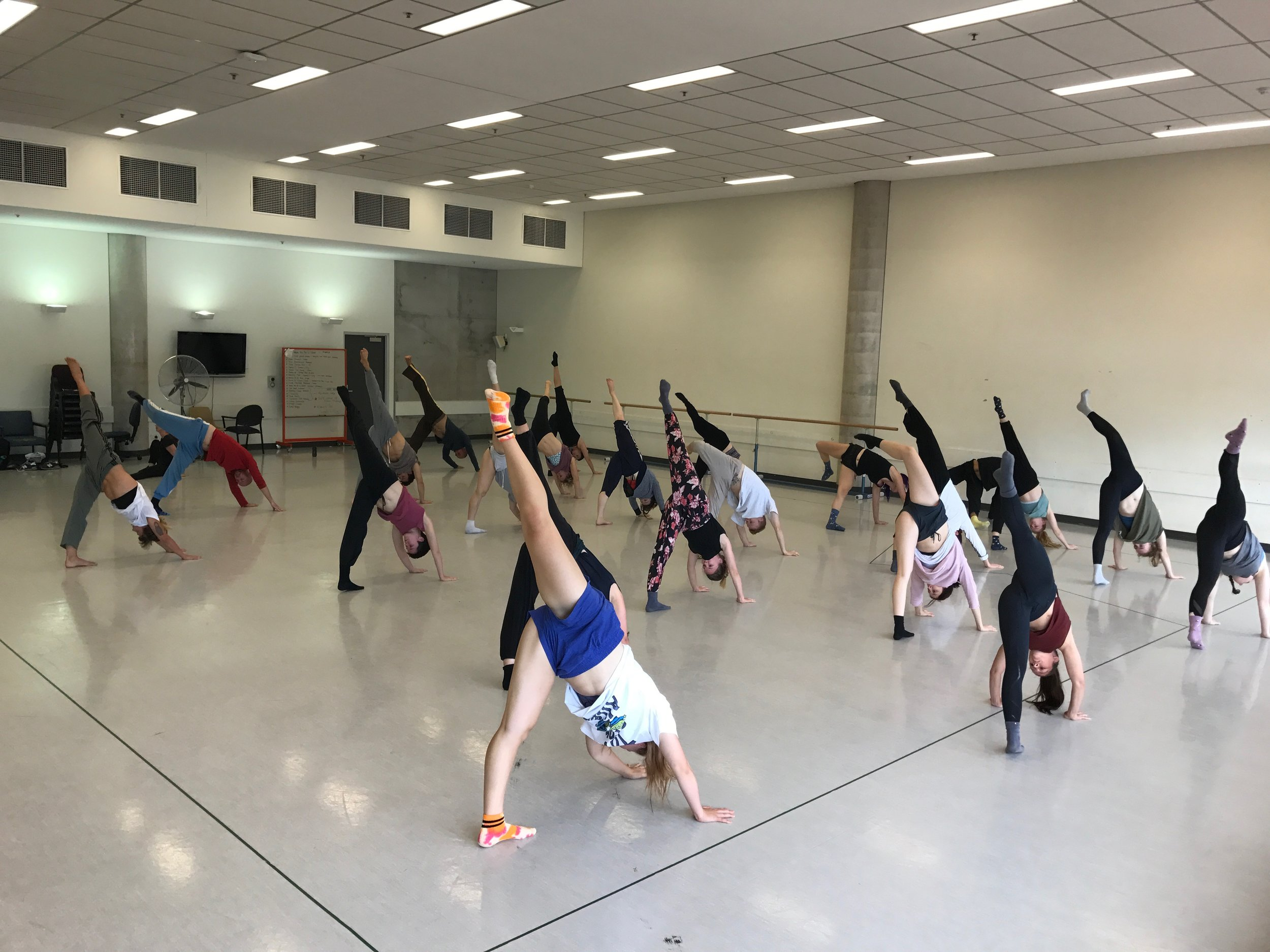 2017 Dance North Womad Masterclass-15.jpg