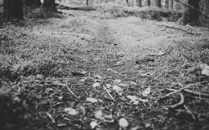 mono-header-path-small.jpg