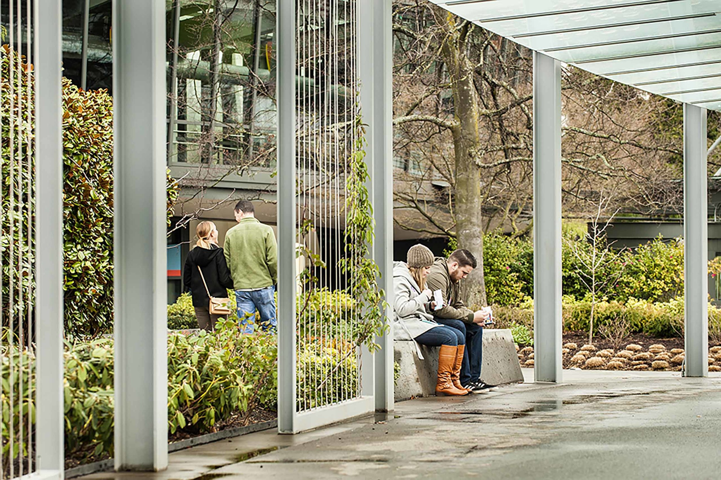 Land Morphology designed the planting areas and South Trellis between Chihuly Garden and Glass and the Space Needle in Seattle, Washington.