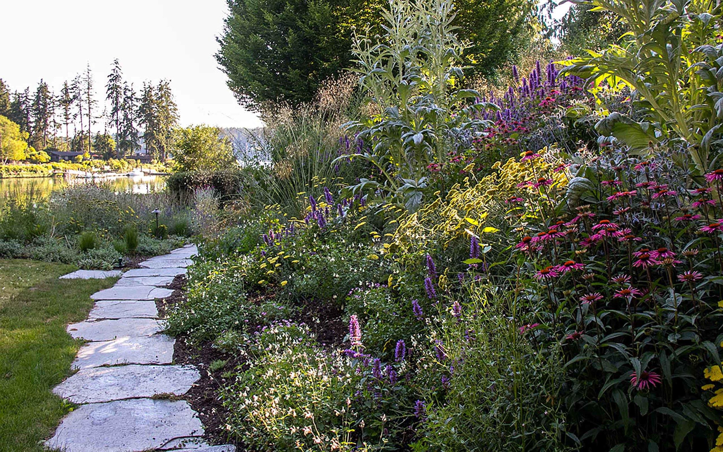 My garden on Bainbridge Island, Washington.