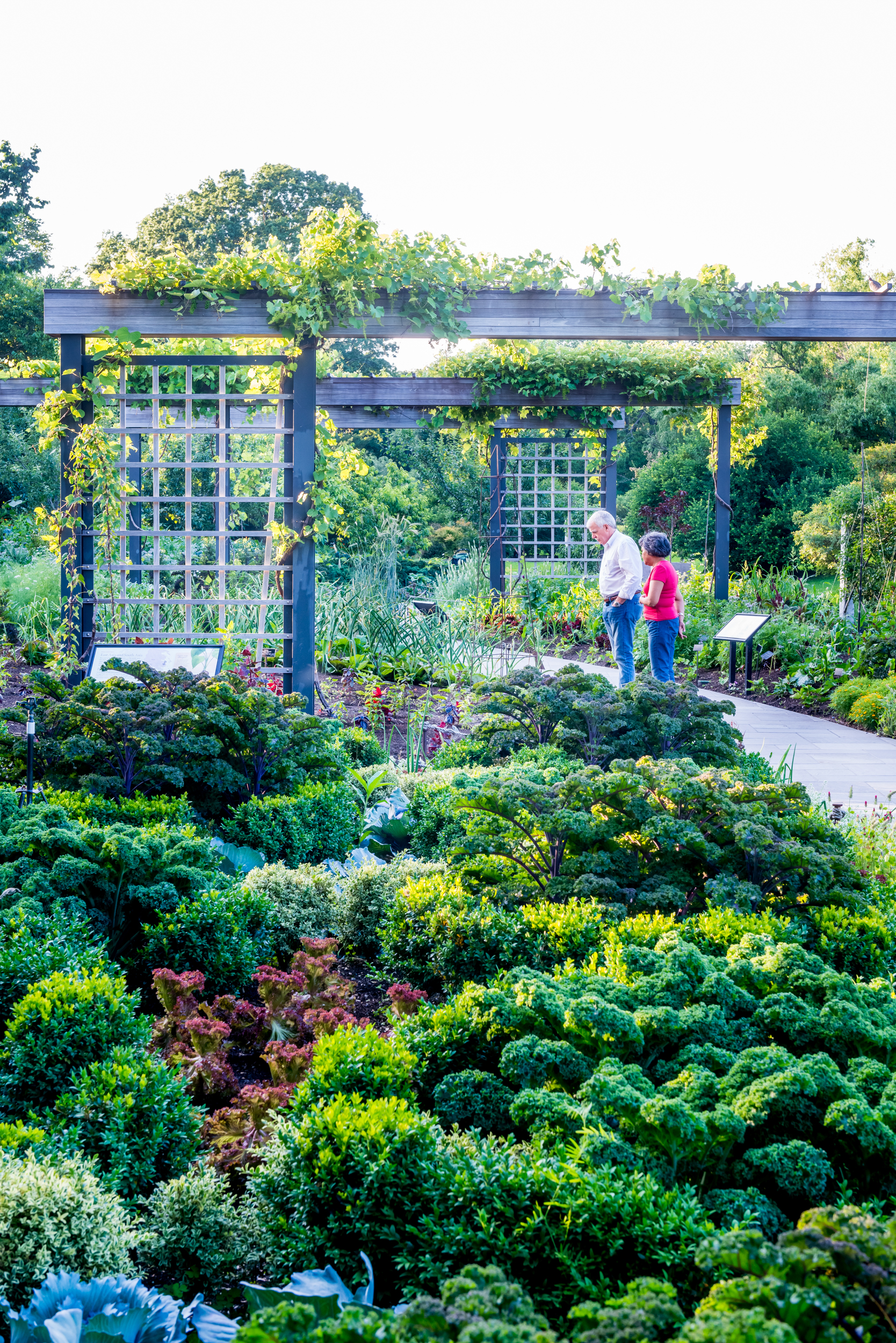 View of educational singage and arbors in Herb Garden