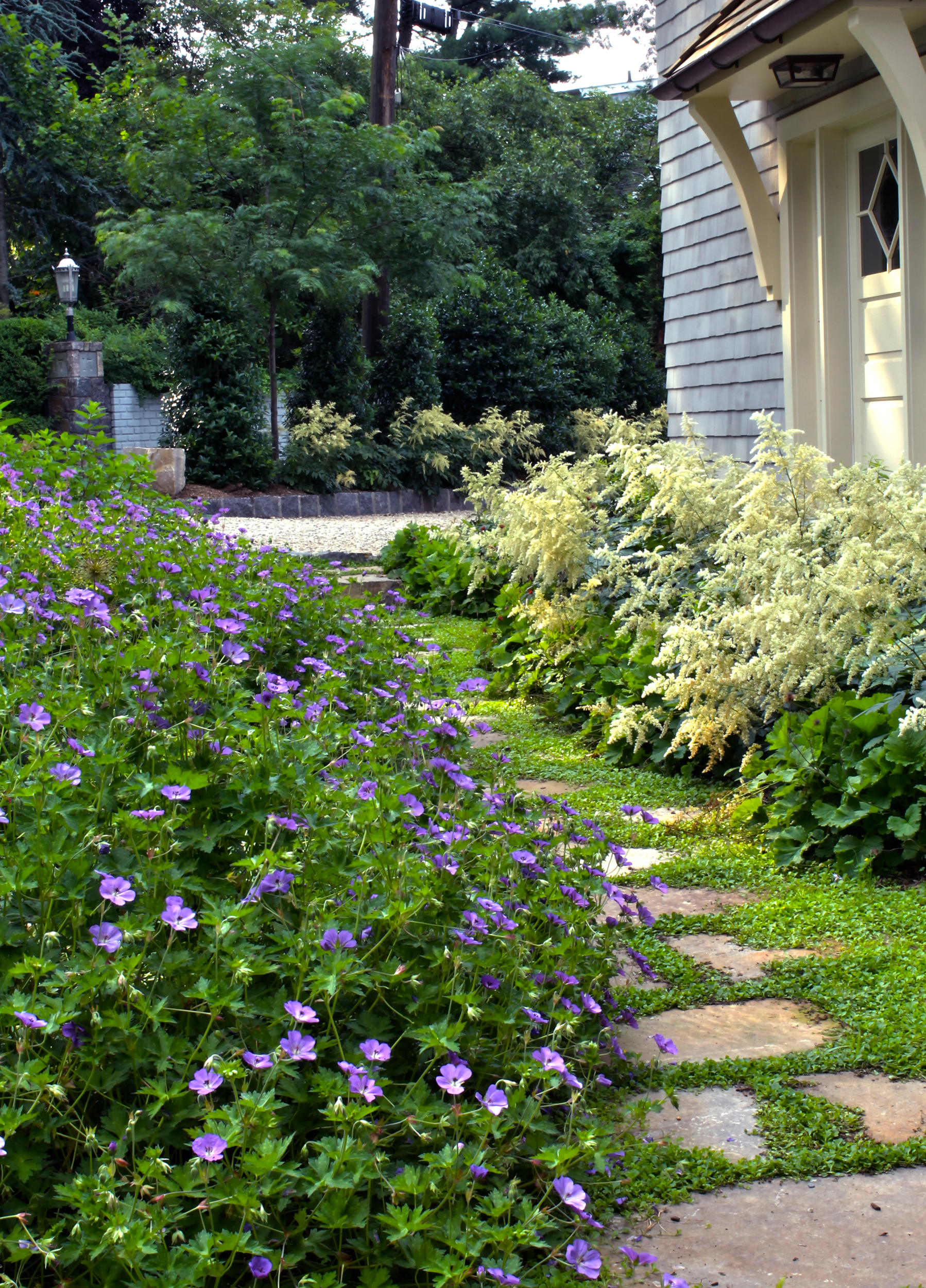 Walkway with stepping stones framed by planting
