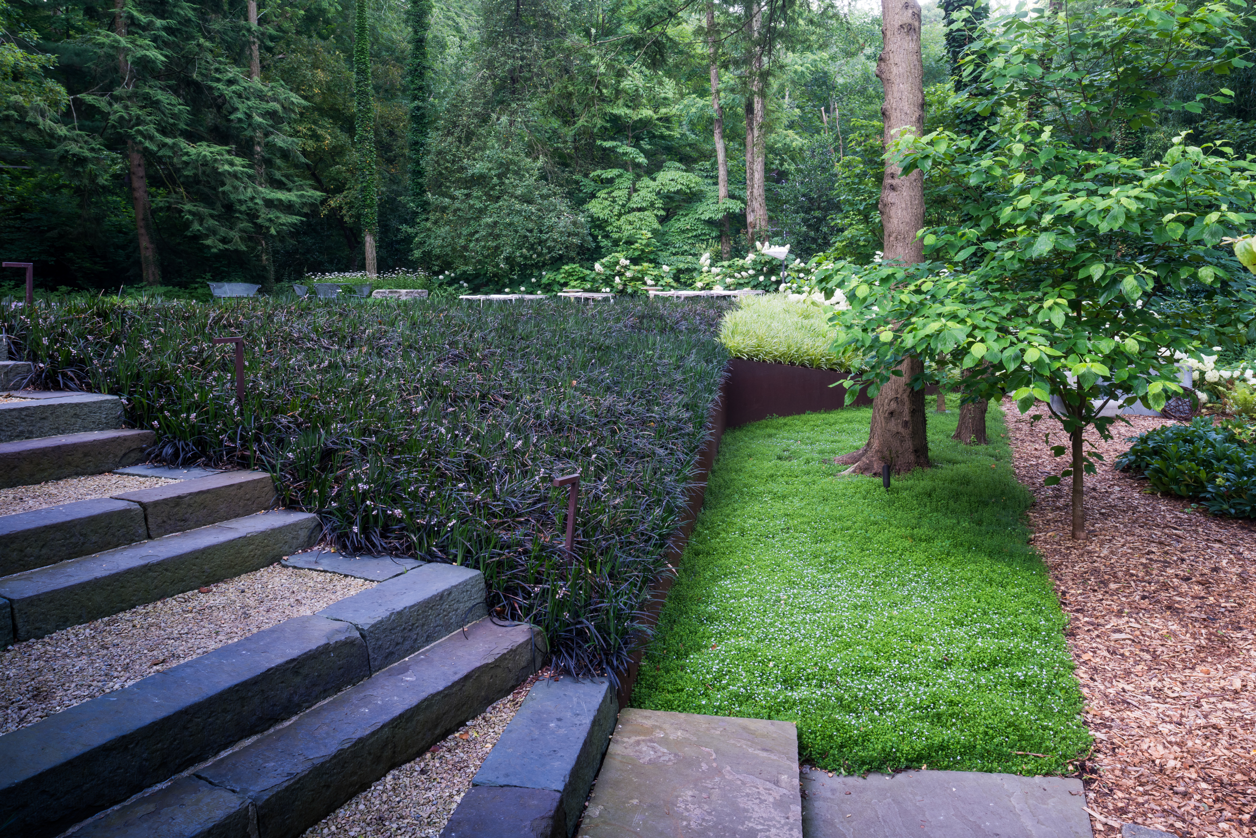 Garden with strongly geometric forms and massplanting
