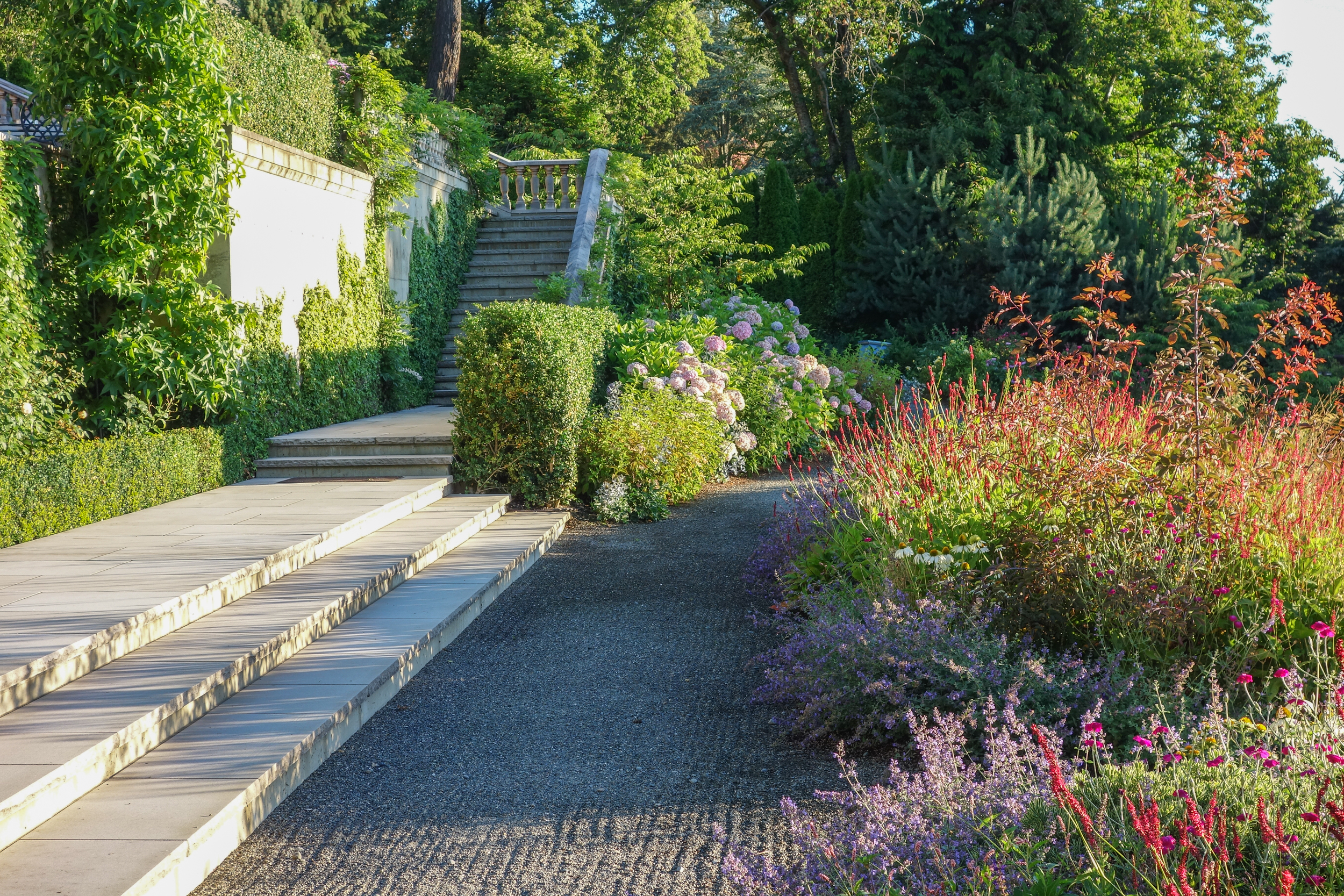 Formal hardscape with meadow planting