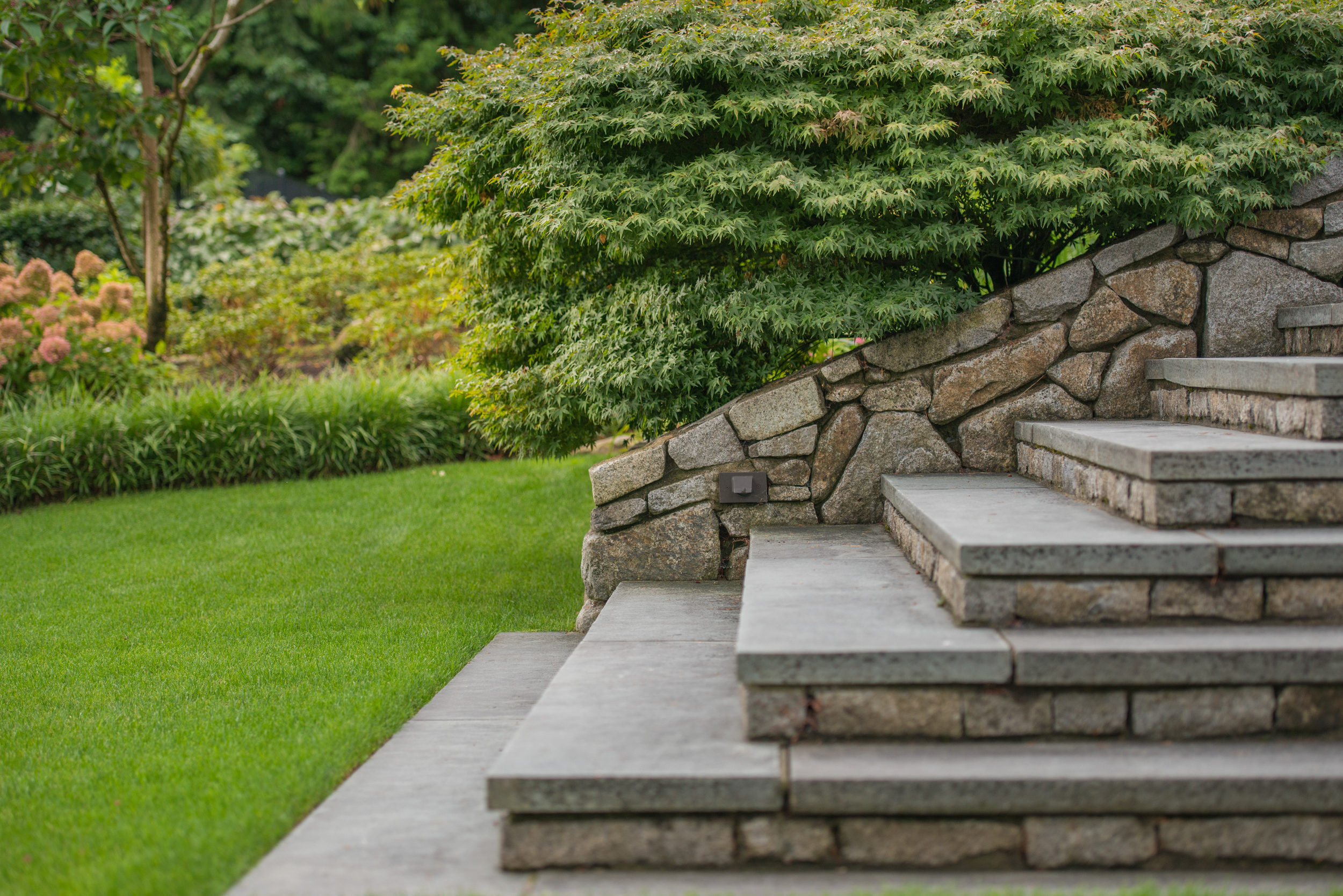 Formal granite steps leading onto the lawn with mass plantings in background