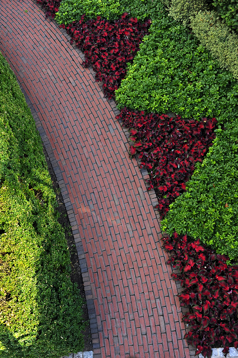 Well-crafted curved brick path