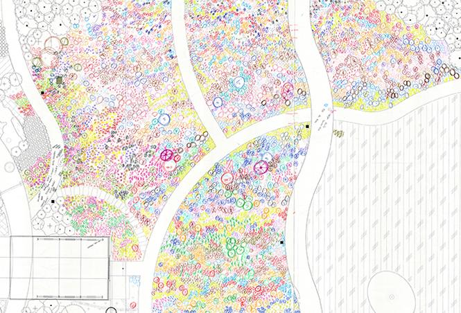 Pollinator Meadow Planting Plan