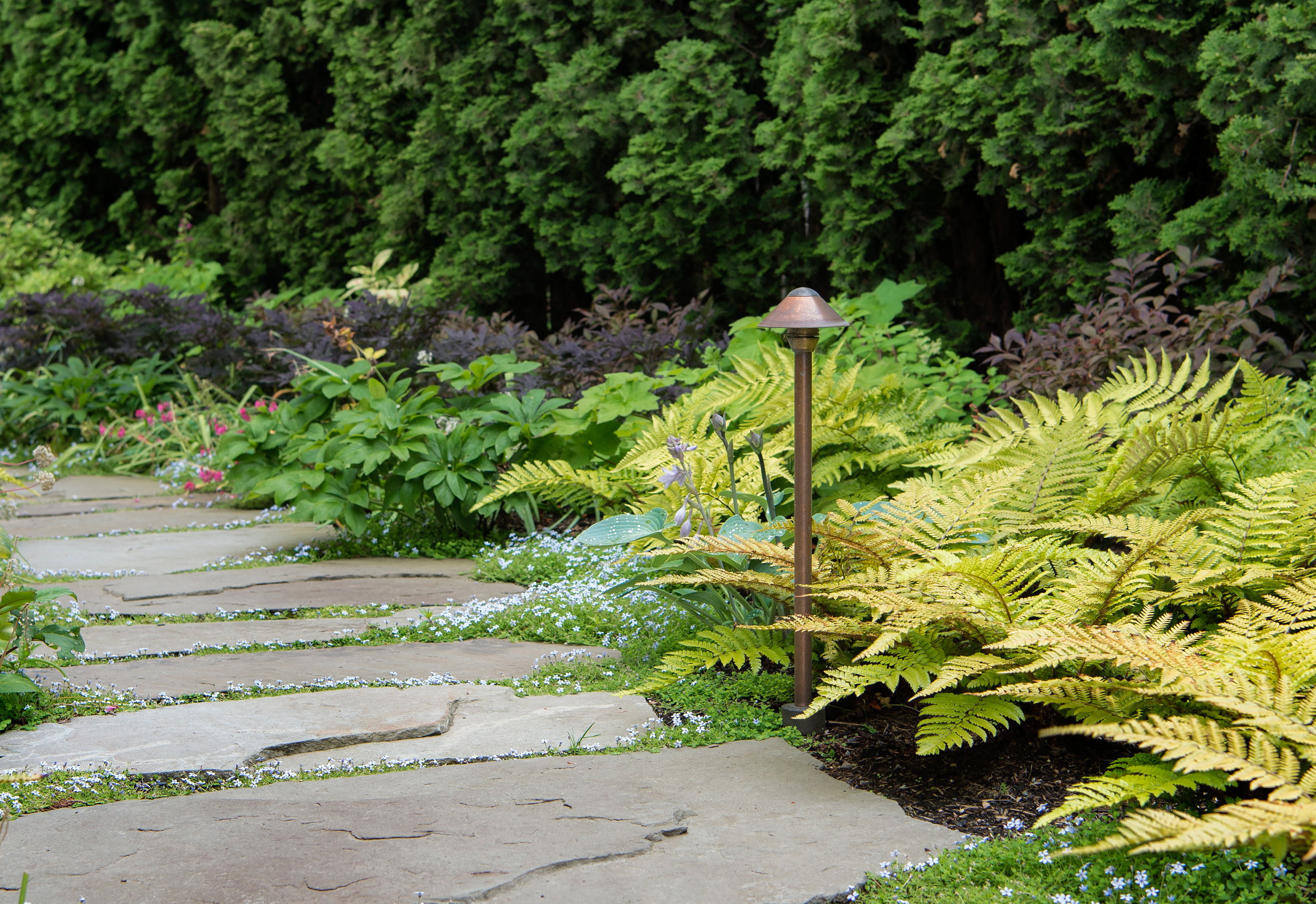 Flagstone pathway with semi formal woodland planting scheme