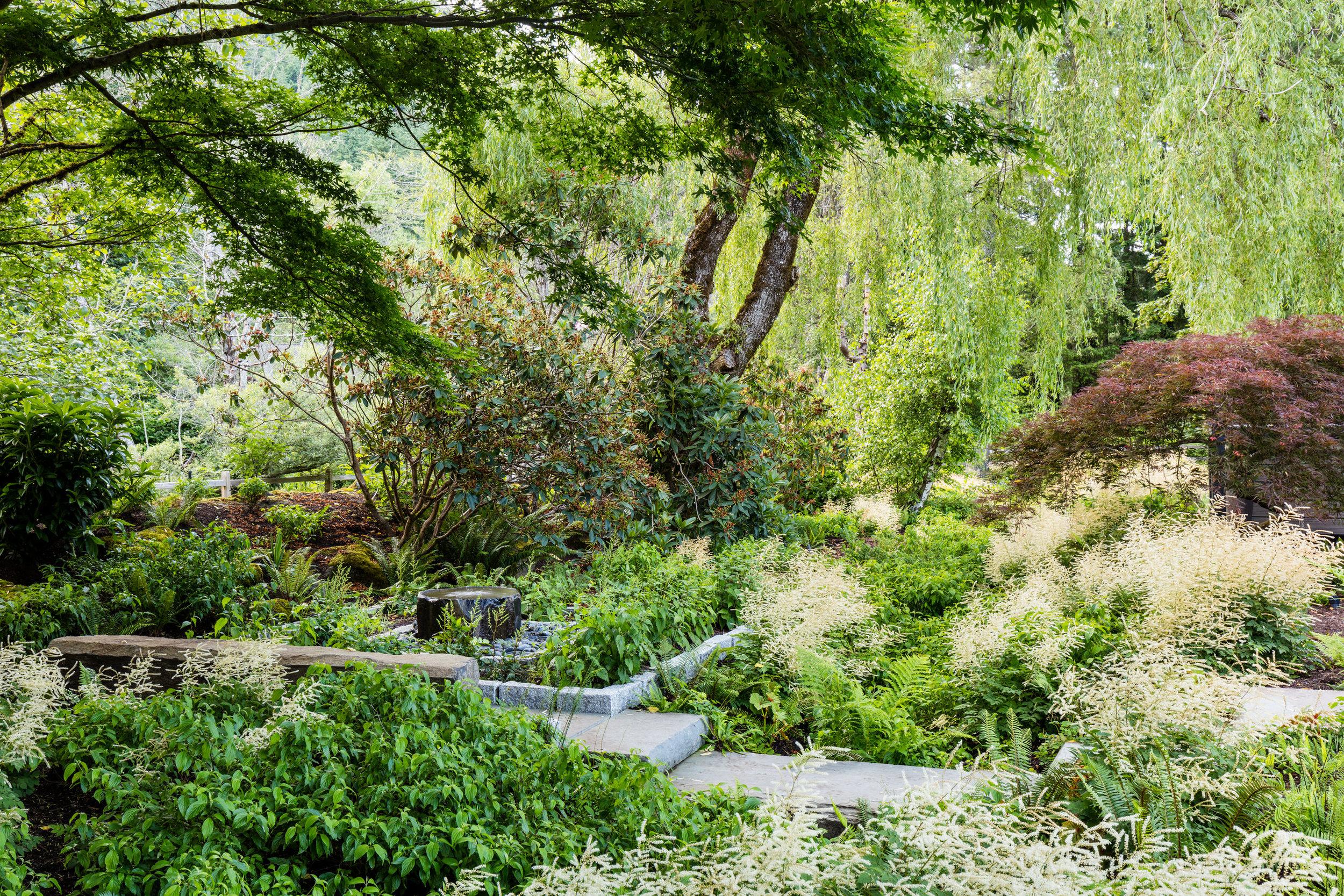 0015-Miranda-Estes-Land-Morphology-Issaquah-Creek-Garden-20190610.jpg