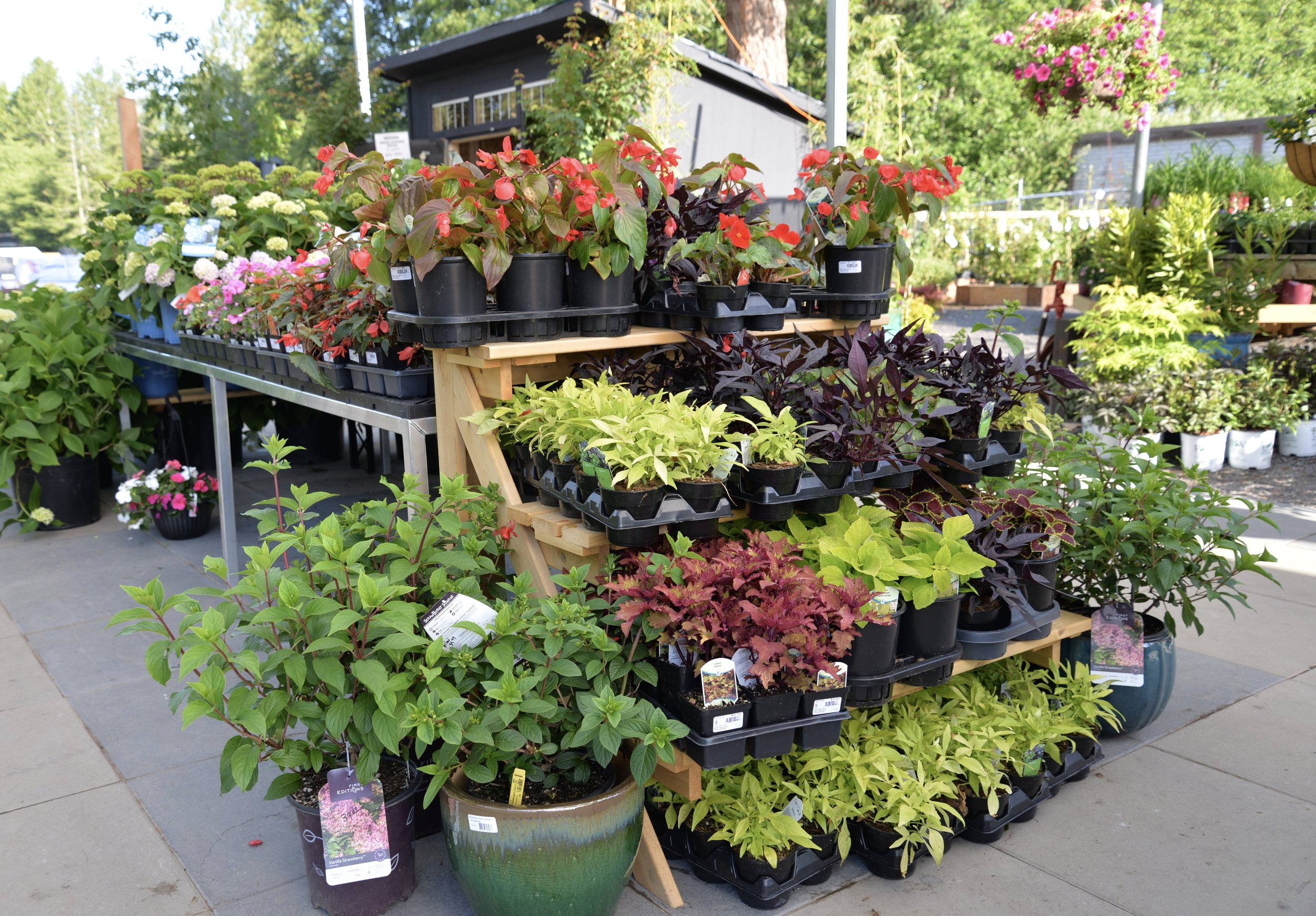 Multi-level displays and end-caps display more plants and containers within view of shoppers.