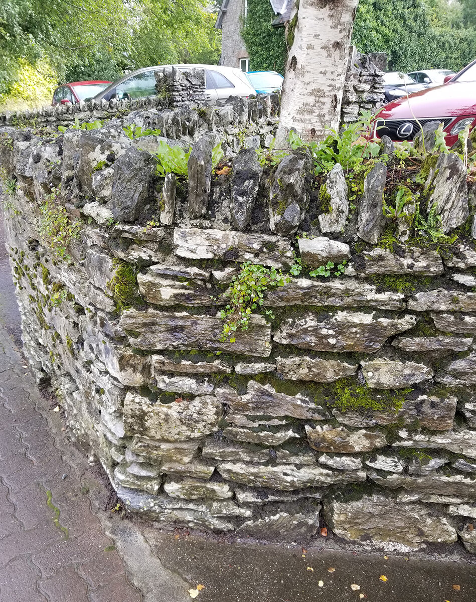 Car Park Wall Retaining_20190926_130240.jpg