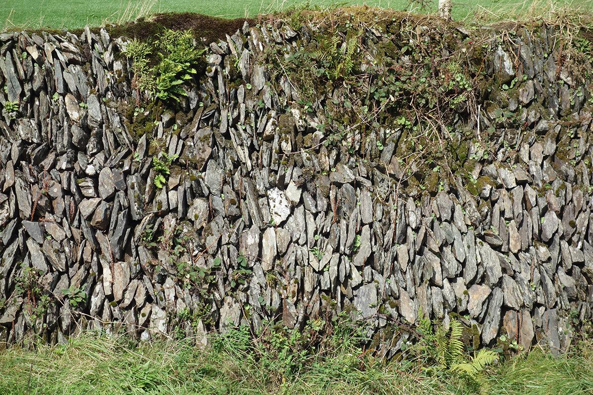 Roadside Vertical stacked Ireland_Dingle_DSC05214.jpg