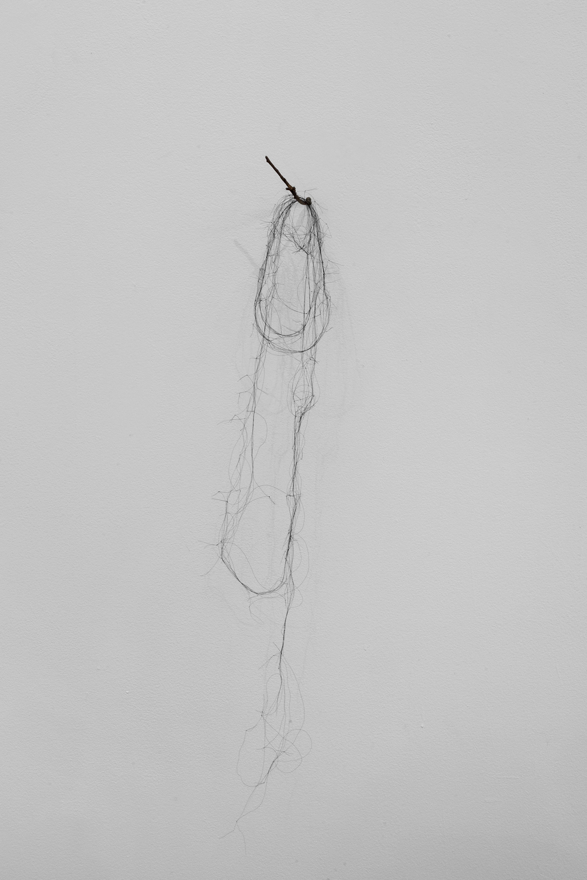 Entangled Memories, cast bronze twig and knotted horse hair.jpg