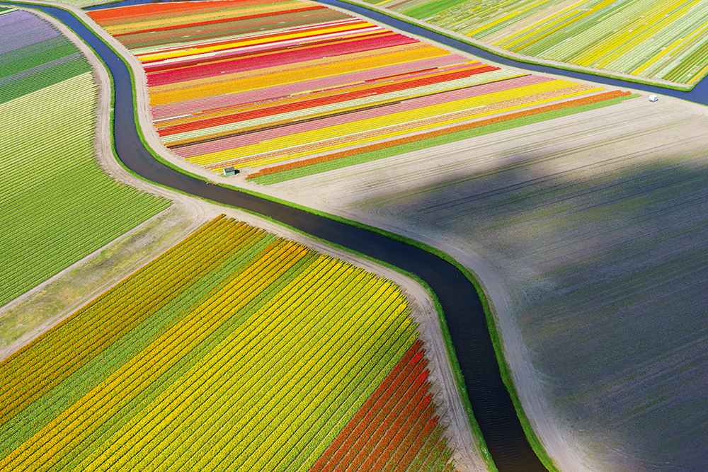 Anders_Andersson-coloured-fields-and-river.jpg