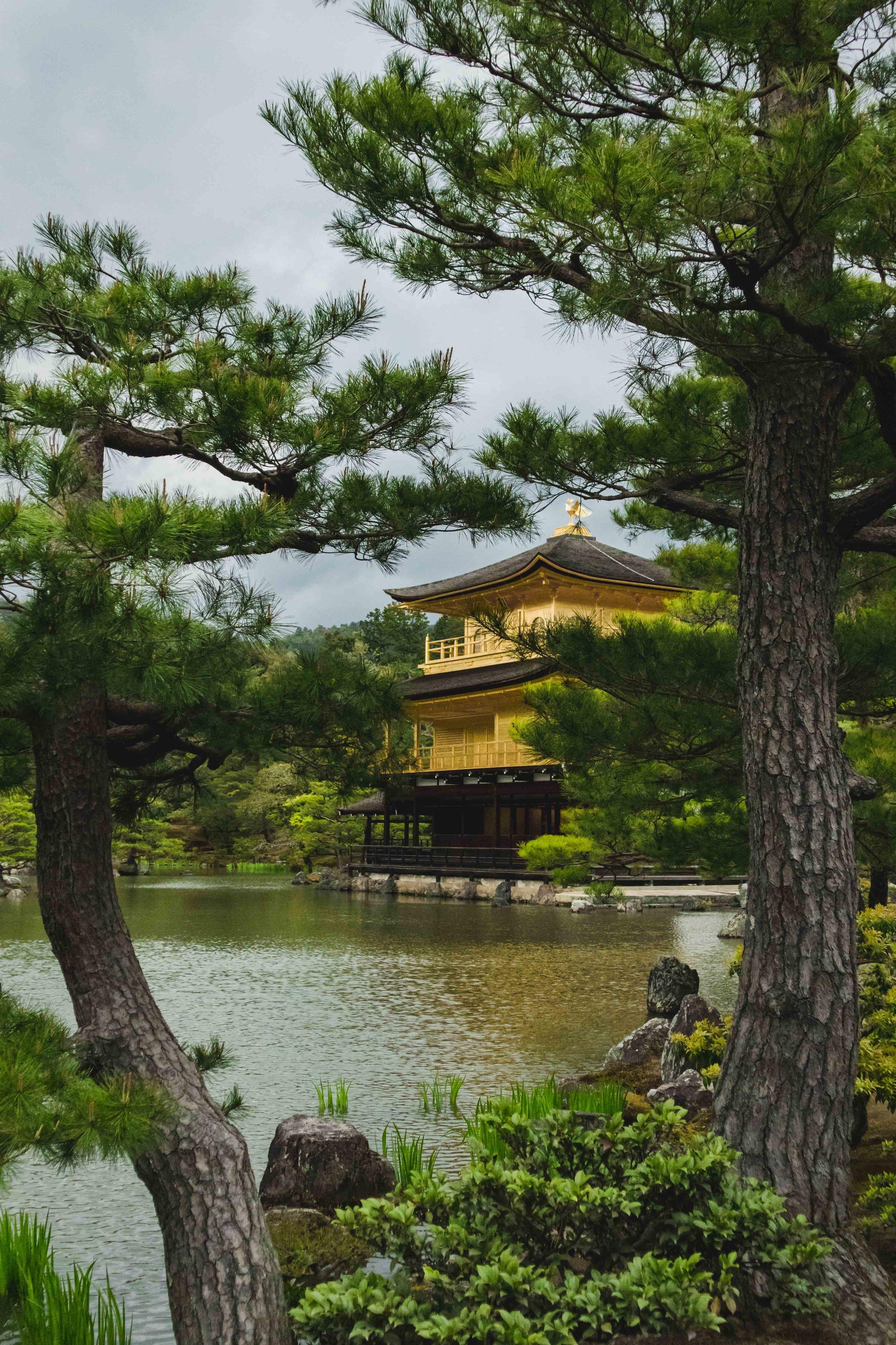 JAPAN_SMLIMG_5916.JPG