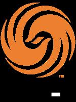 feng huang tv logo 04.png