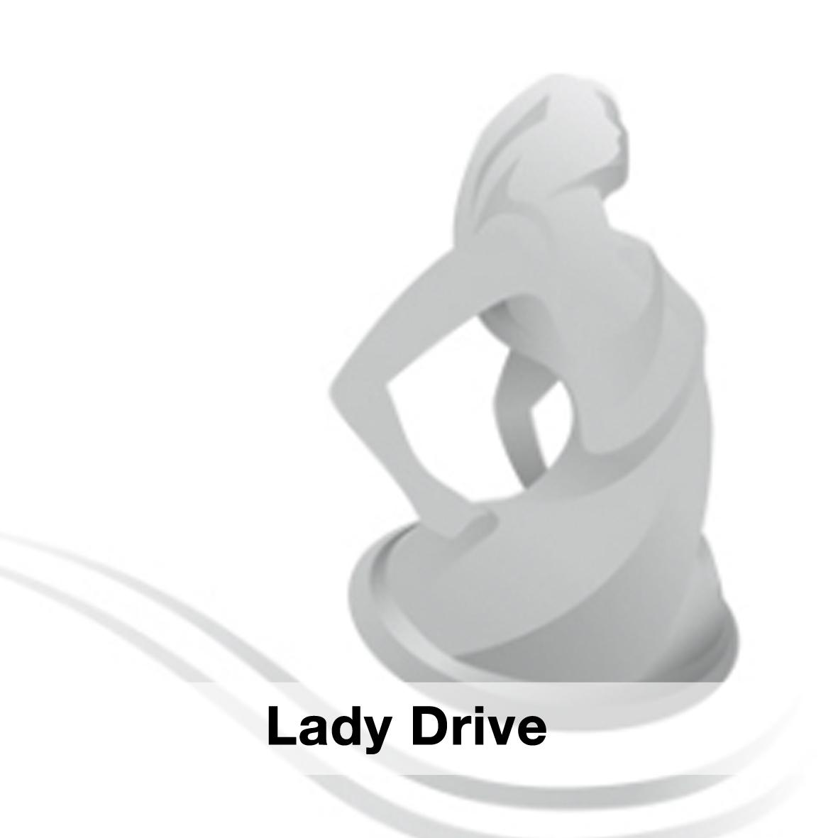 lady drive.jpg