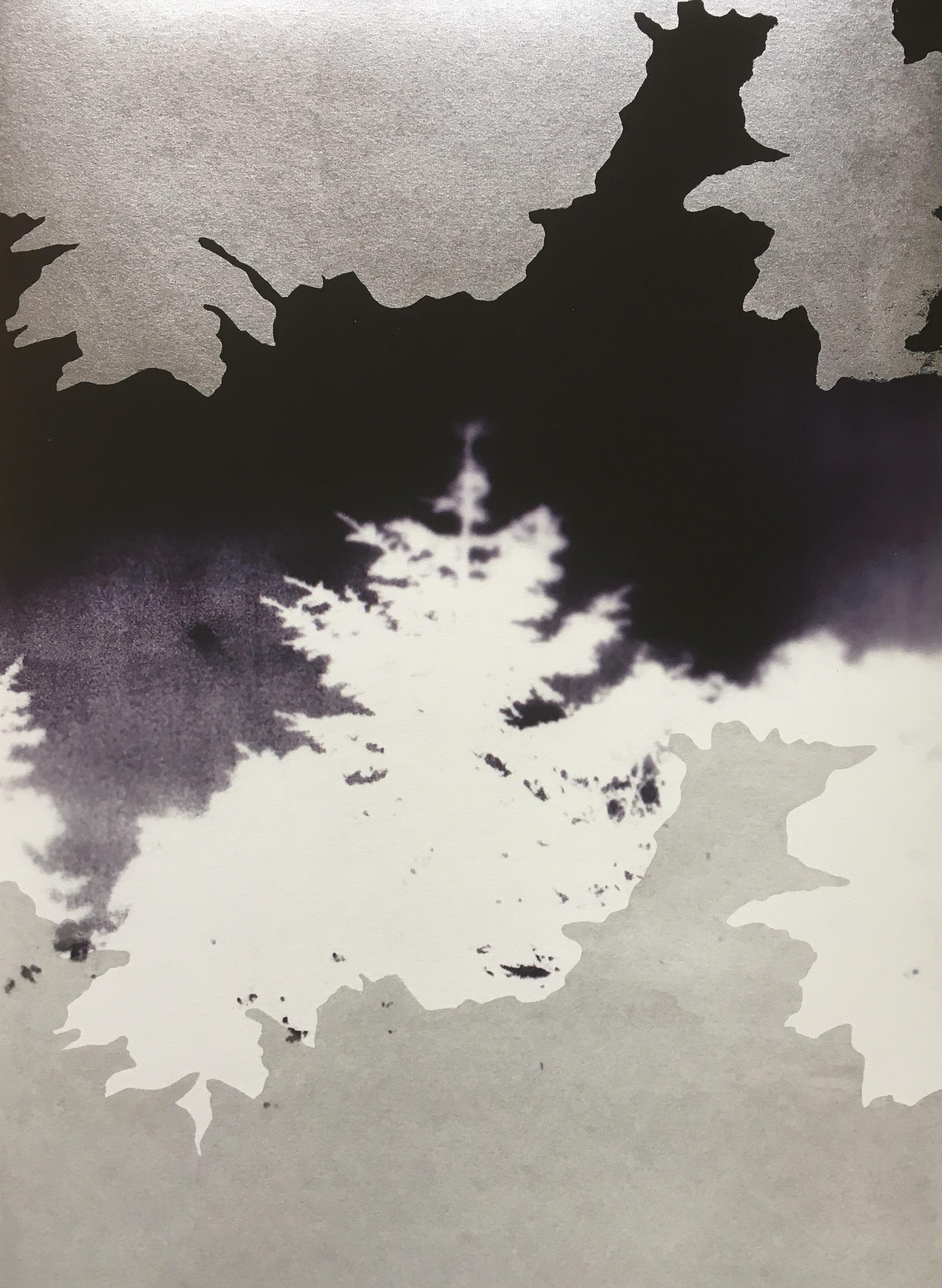 Nocturne 1.JPG