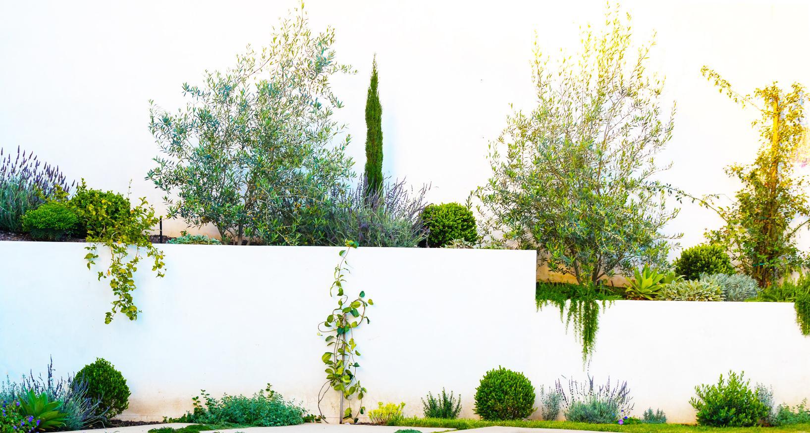GRAYDONYEARICKARCHITECT.NEANDROSS.Wide back planter wall.jpg