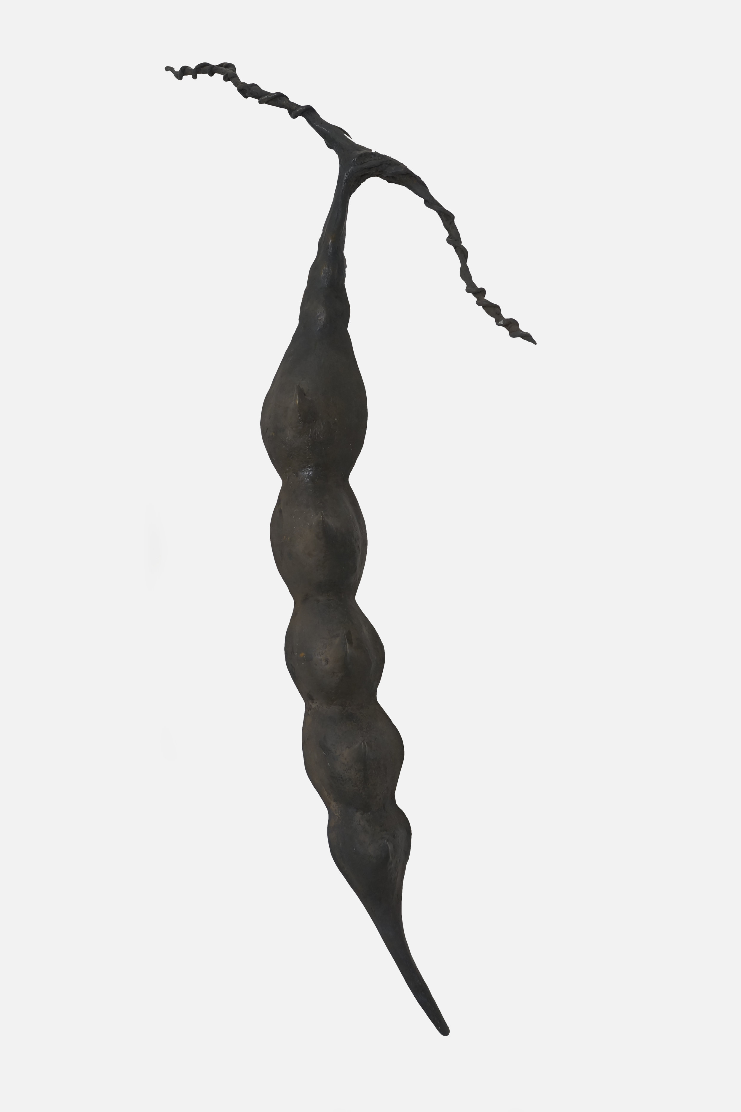 Large Bronze Branch w: Seedpod.jpg
