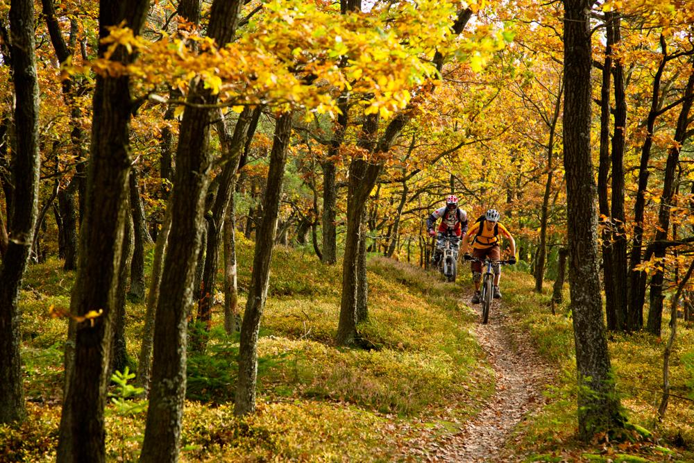 bildarchiv-mountainbike-07.jpg
