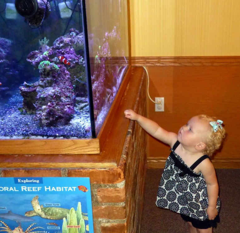 fish & little girl.jpg