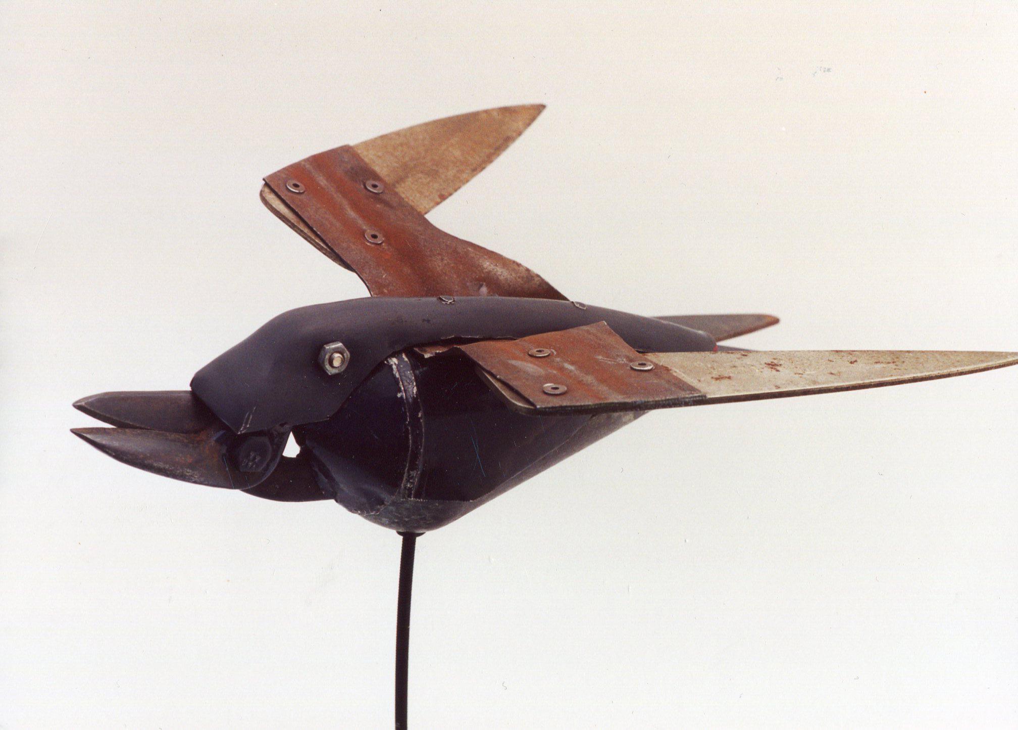 Clipper Bird